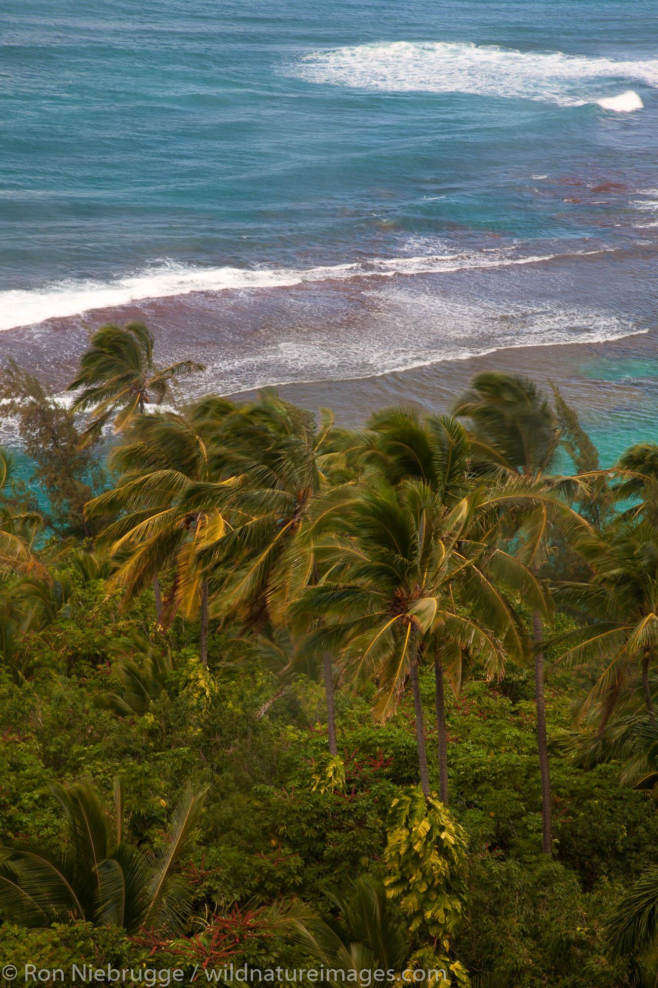 Ke'e Beach and the Na Pali Coast from the Kalalau Trail, Kauai, Hawaii.