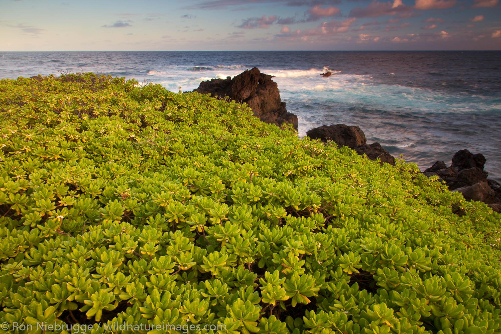 Maui, Hawaii, photos, photo