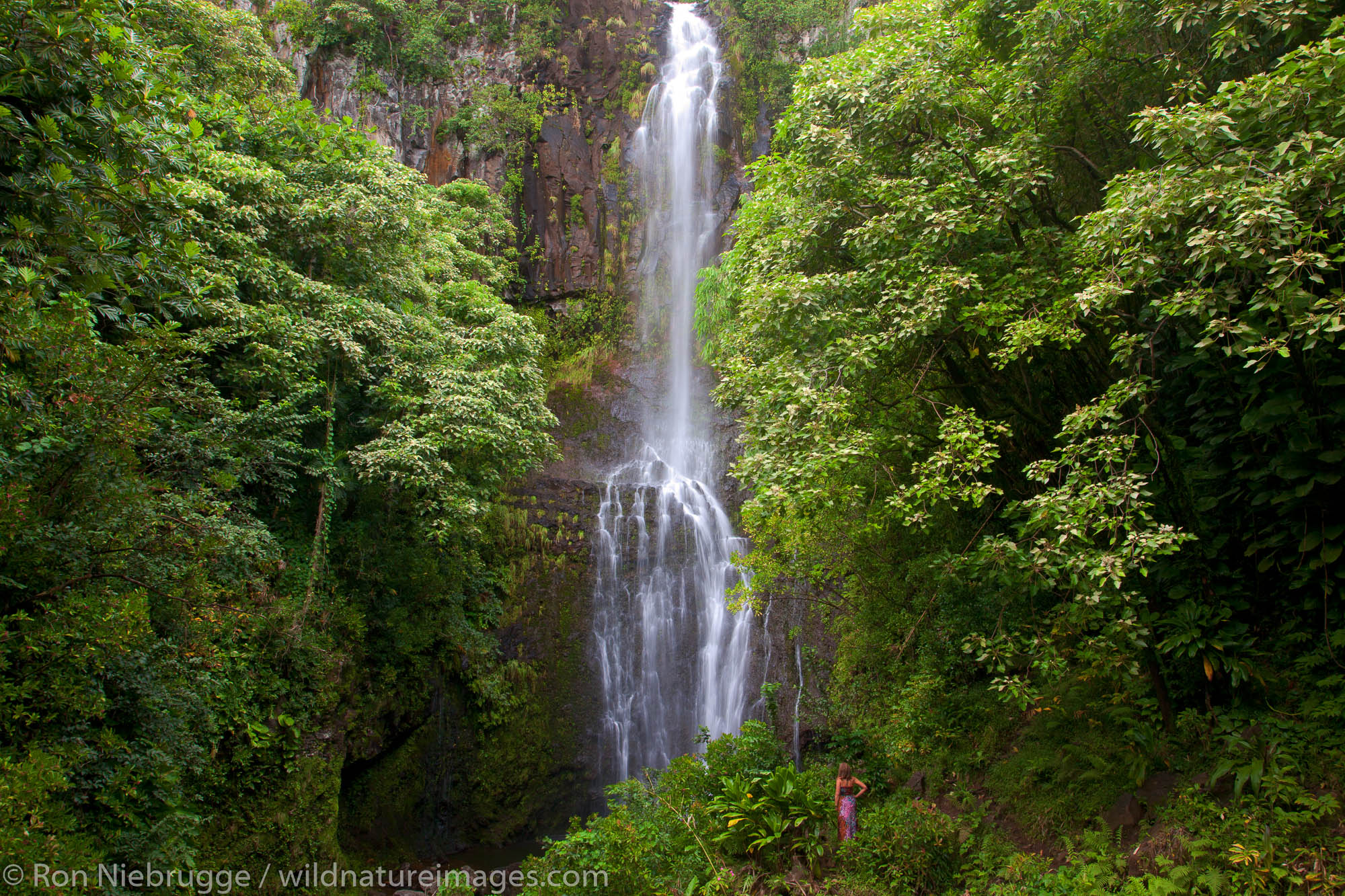 Maui, Hawaii, photo