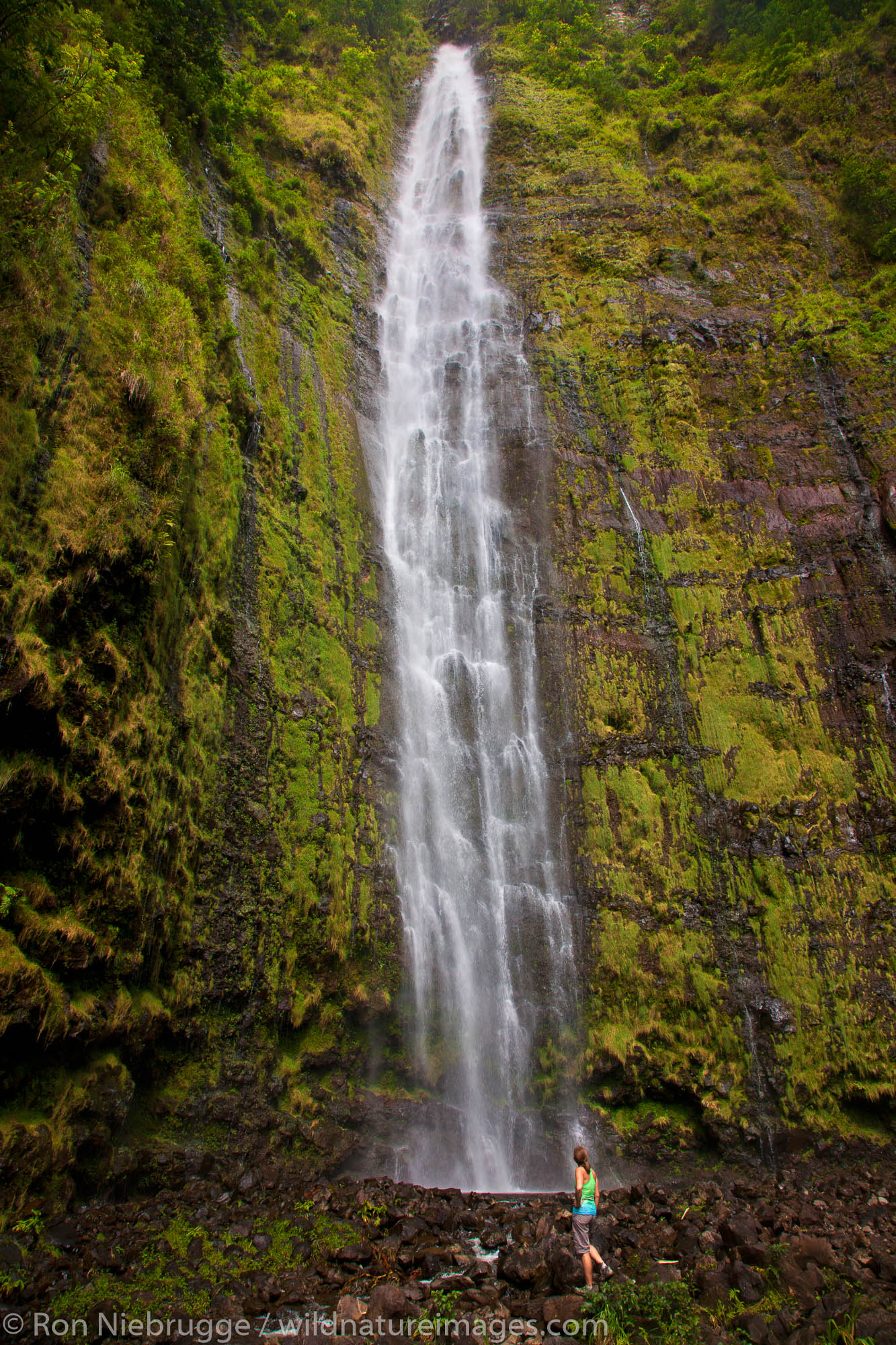 Hiker at Waimoku Falls at the end of the Pipiwai Trail above the Ohe'o Gulch - aka Seven Sacred Pools, Haleakala National Park...