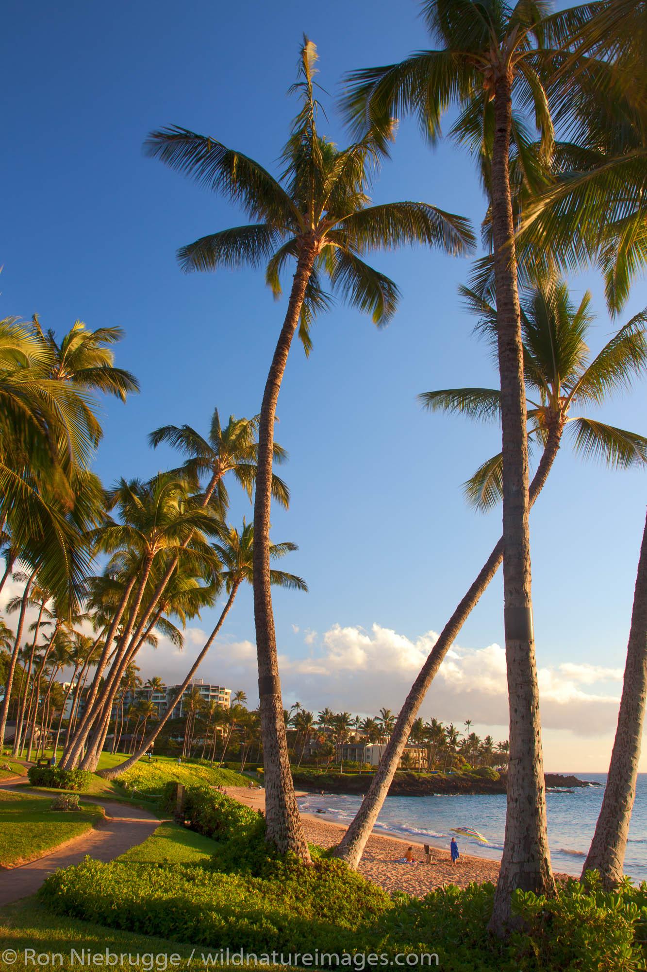 Ulua Beach, Wailea, Maui, Hawaii.
