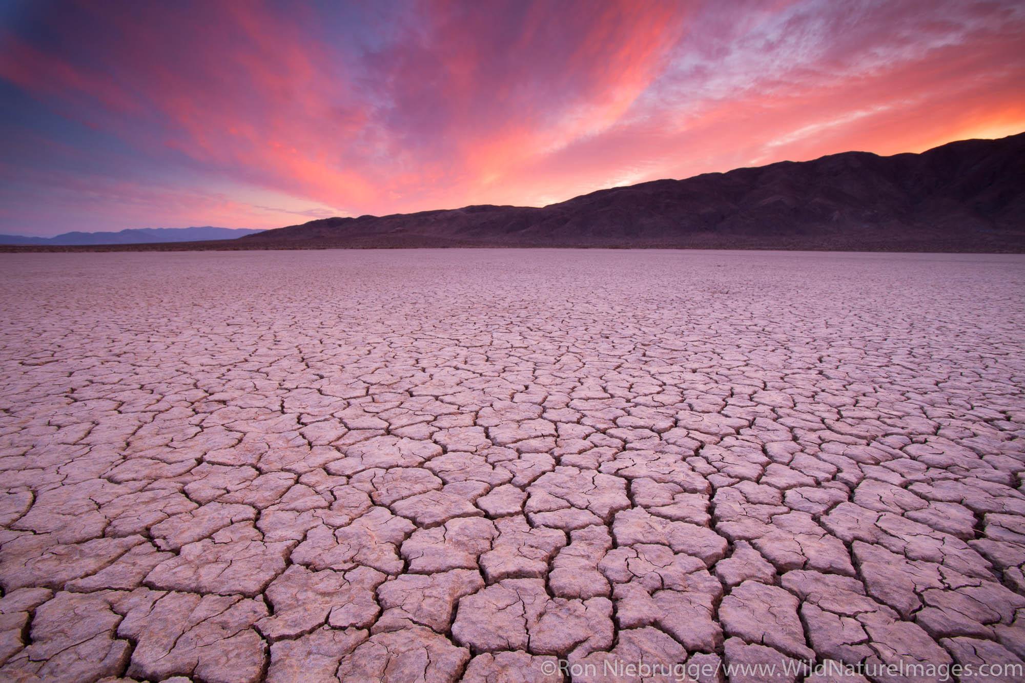 Dry lake bed, Anza-Borrego Desert State Park, California.