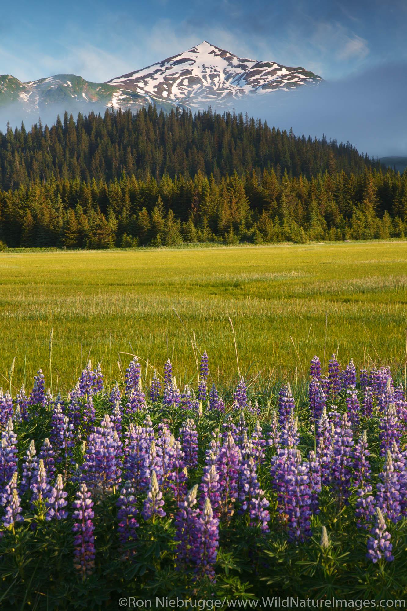 Lake Clark National Park, Alaska,, photo