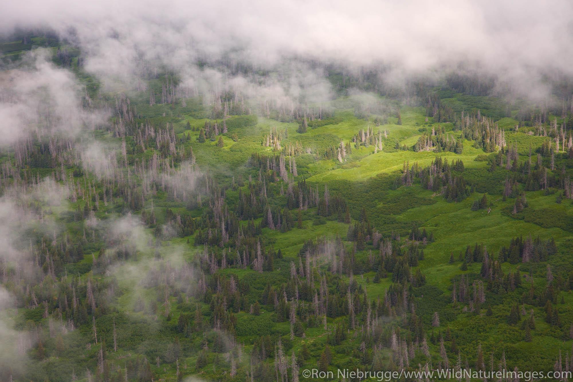 Aerial along Cook Inlet, Alaska.