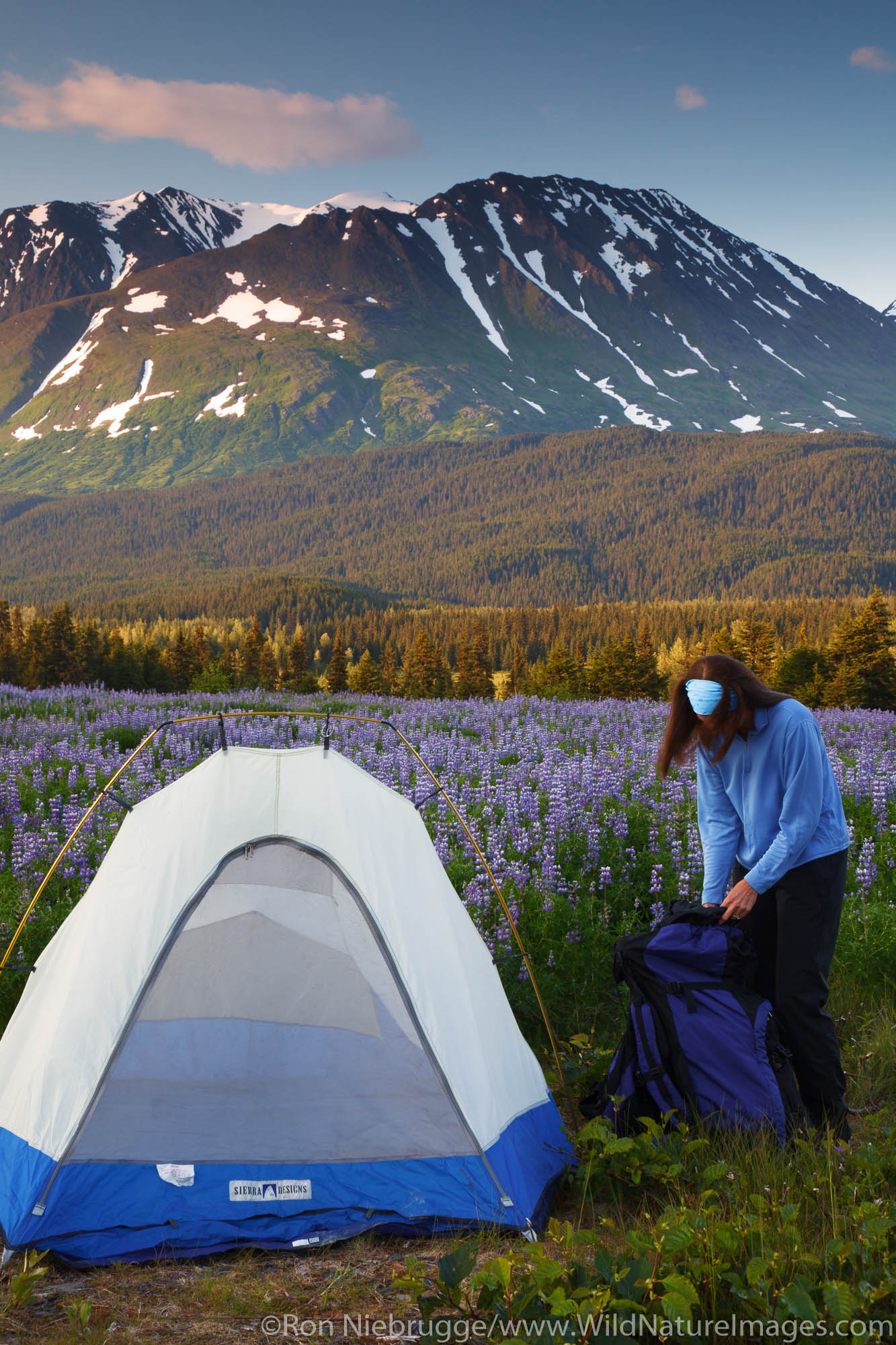 Camping in the Chugach National Forest, Alaska.  (model released)