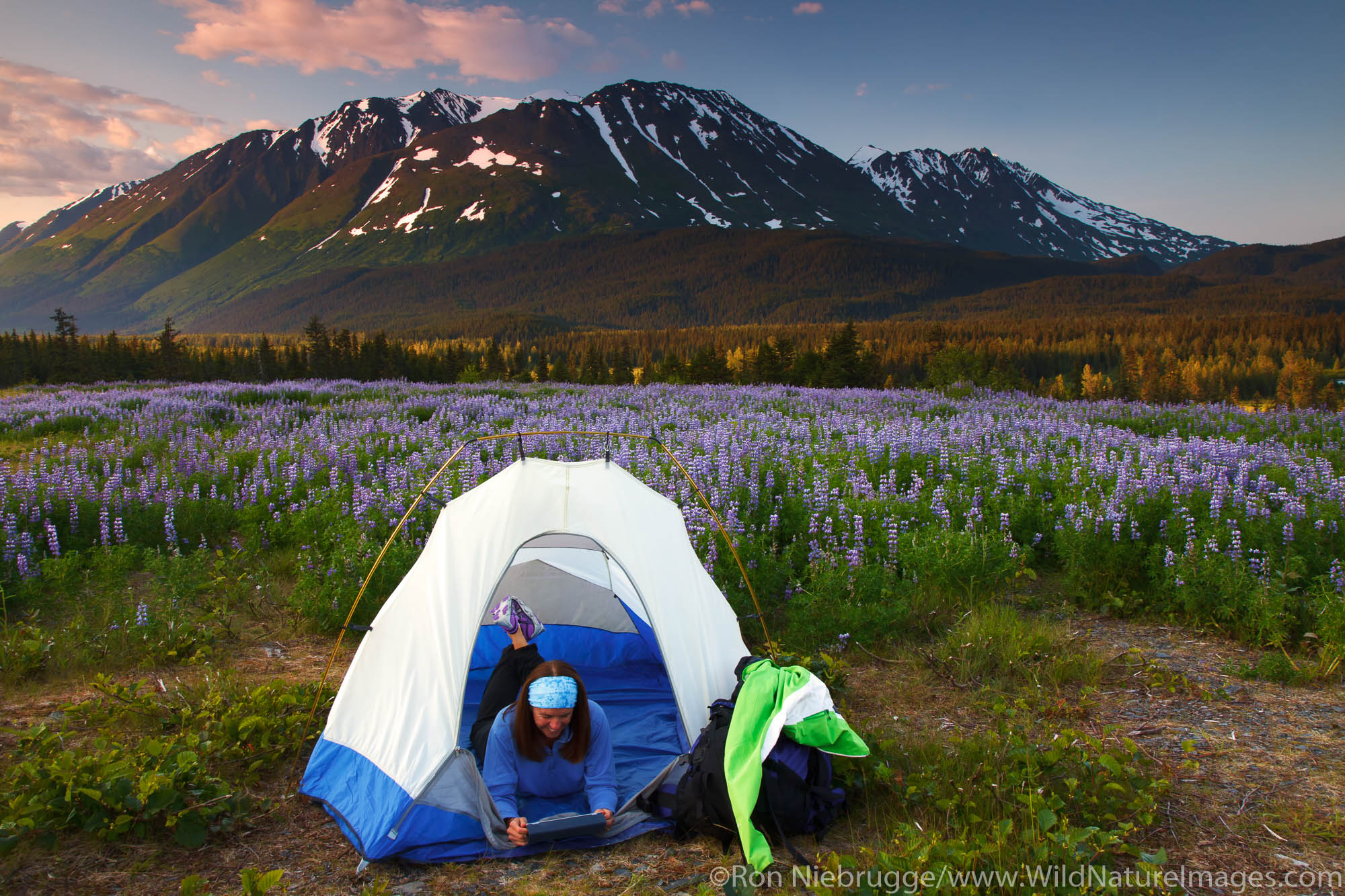 Reading an ipad while camping in the Chugach National Forest, Alaska.  (model released)