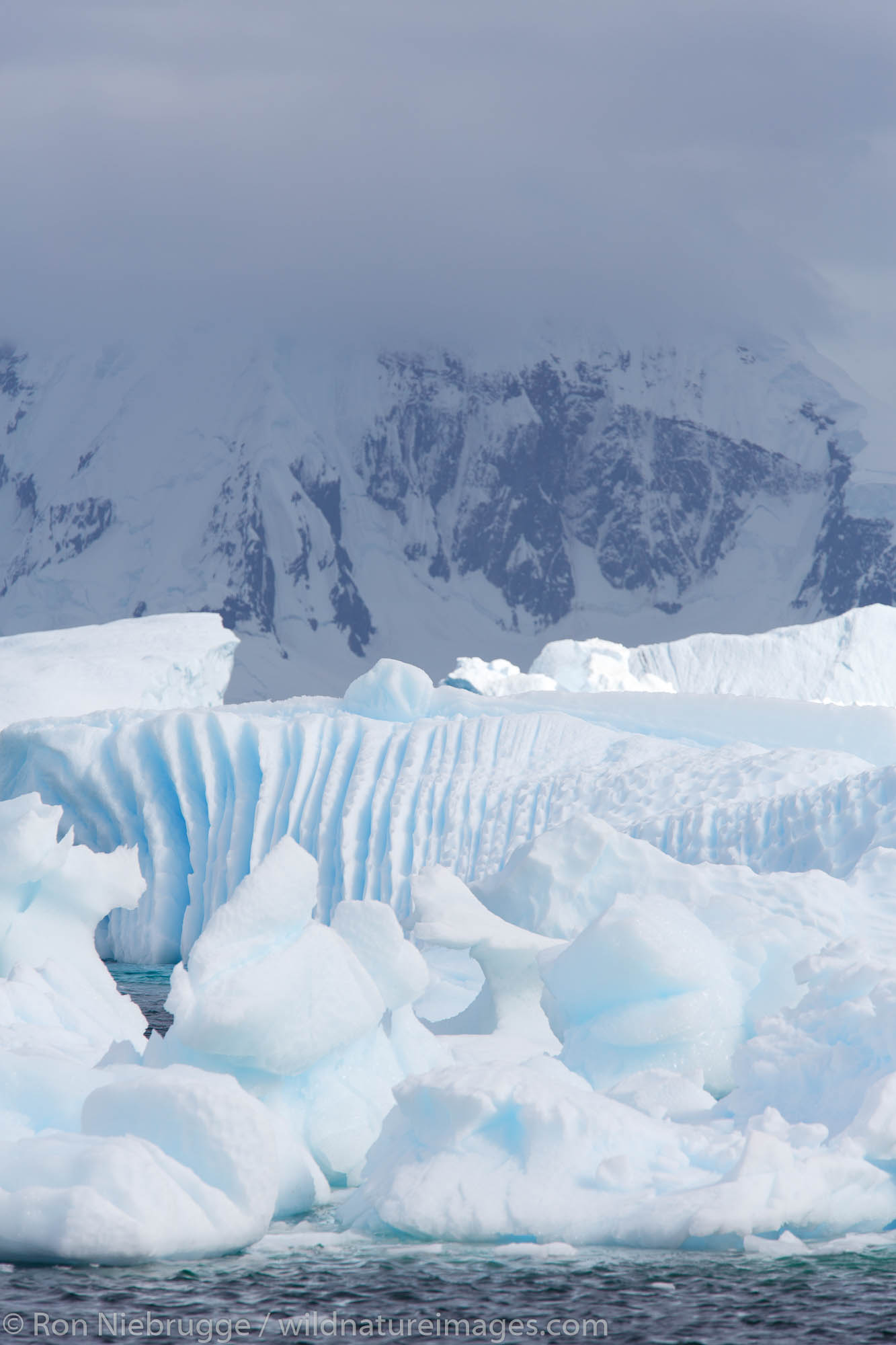 Icebergs at Cuverville Island, Antarctica.