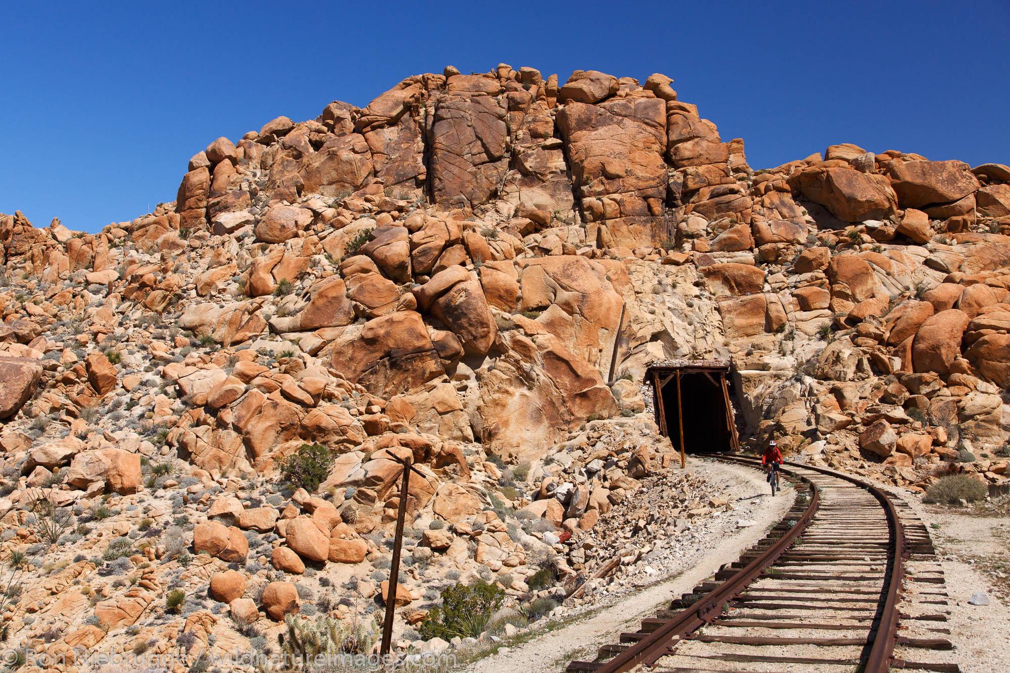 Mountain biking the Carrizo Gorge Railroad Track, Anza-Borrego Desert State Park, California.