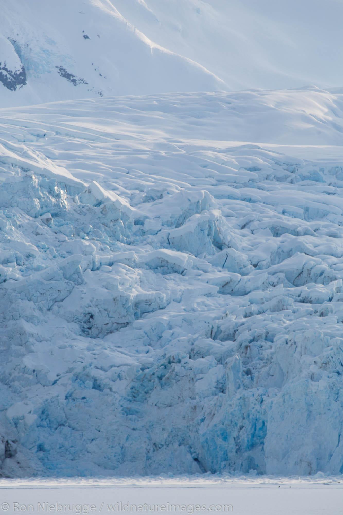 Nellie Juan Glacier, Prince William Sound, Chugach National Forest, Alaska.