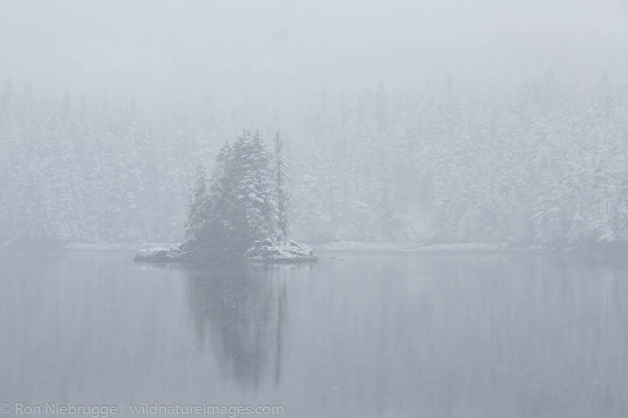 Snow in Culross Passage, Prince William Sound, Chugach National Forest, Alaska.