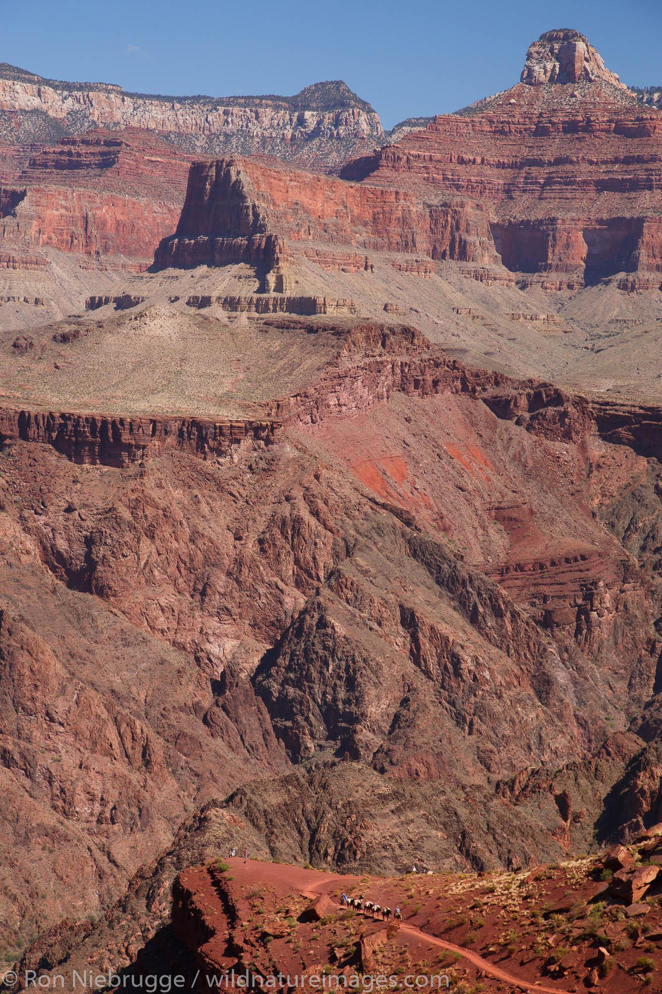 South Kaibab Trail, Grand Canyon National Park, Arizona.