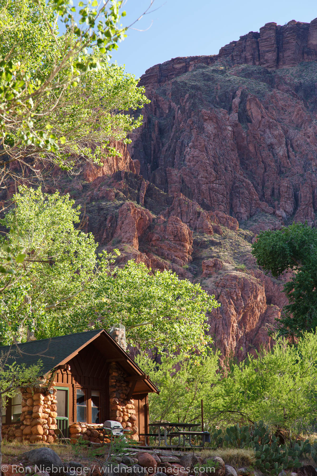 Park Service cabin at the bottom of the Grand Canyon near the Colorado River and Bright Angel Creek, Grand Canyon National Park...