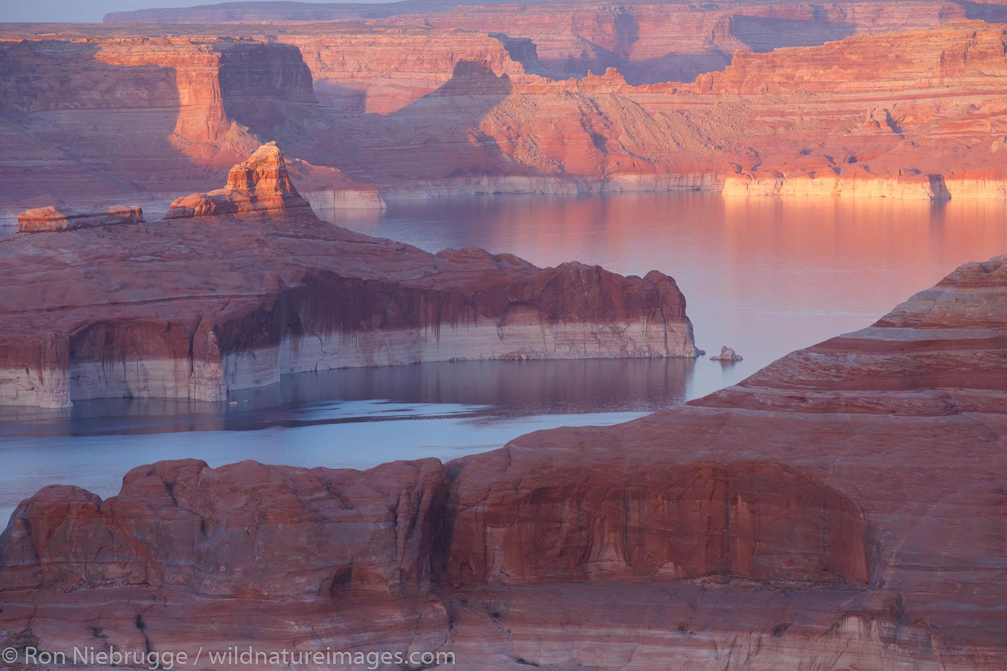 Alstrom Point Lake Powell Glen Canyon National Recreation Area Page Arizona.