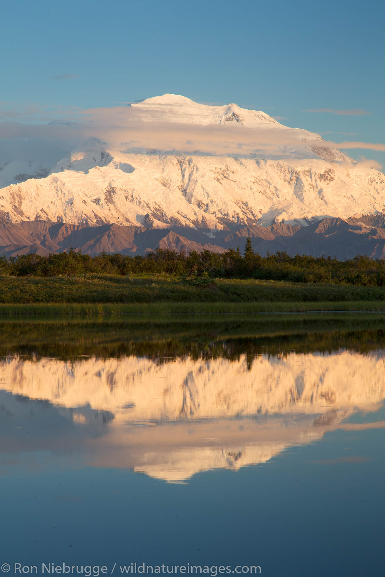 Mt. McKinley, locally known as Denali, at Reflection Pond, Denali National Park, Alaska.