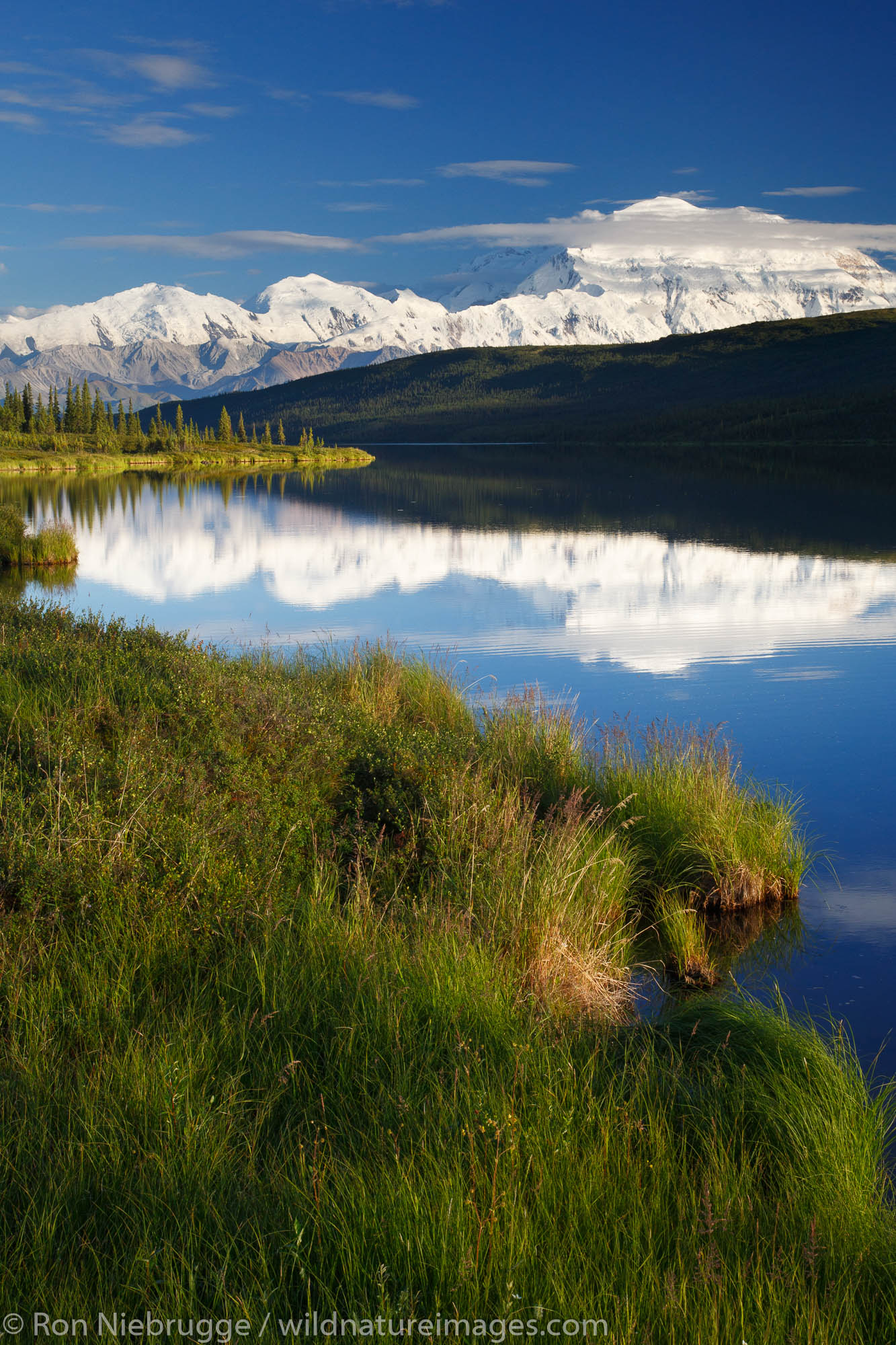 Mt. McKinley, also known as Denali, from Wonder Lake, Denali National Park, Alaska.