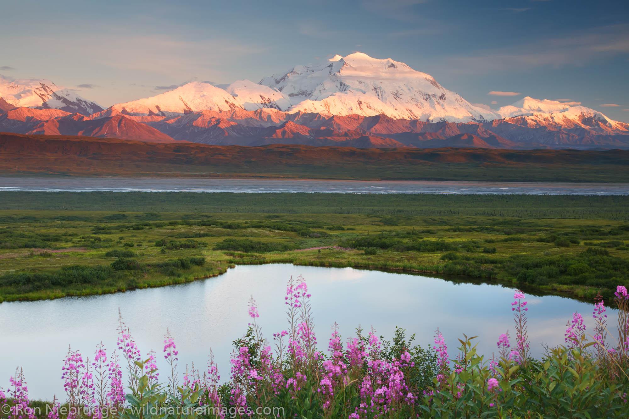 Mt. McKinley, also known as Denali, Denali National Park, Alaska.