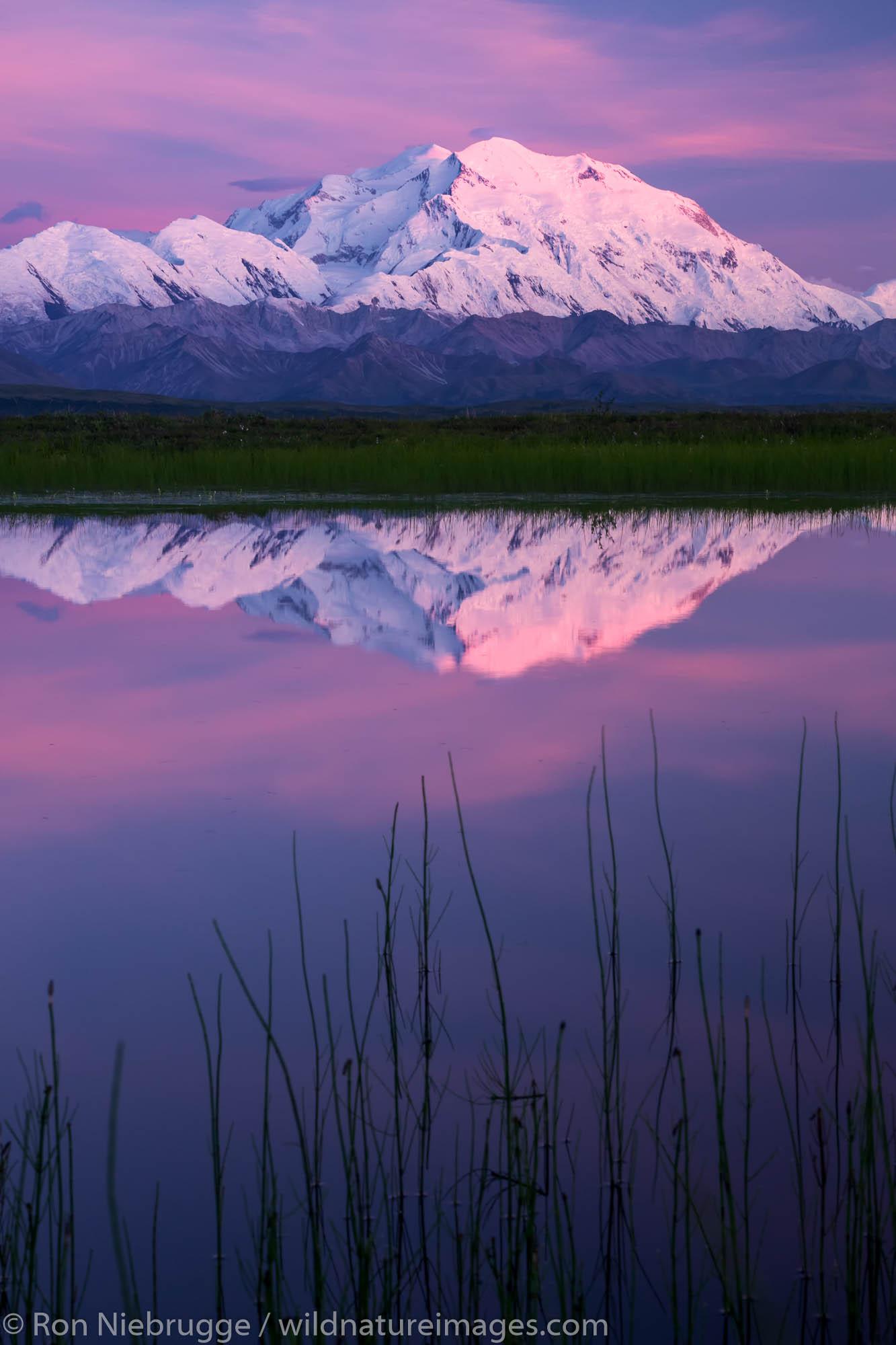 Denali National Park, Alaska, photo, picture, photo