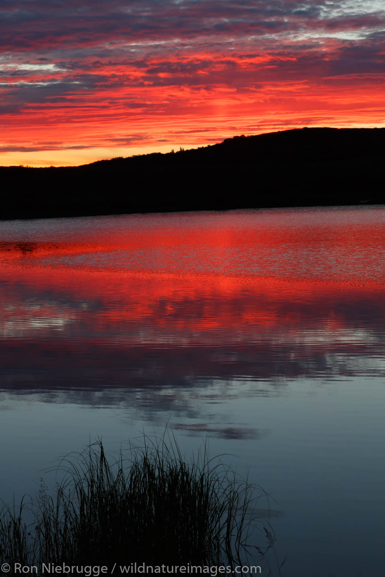 Sunset in Denali National Park, Alaska.