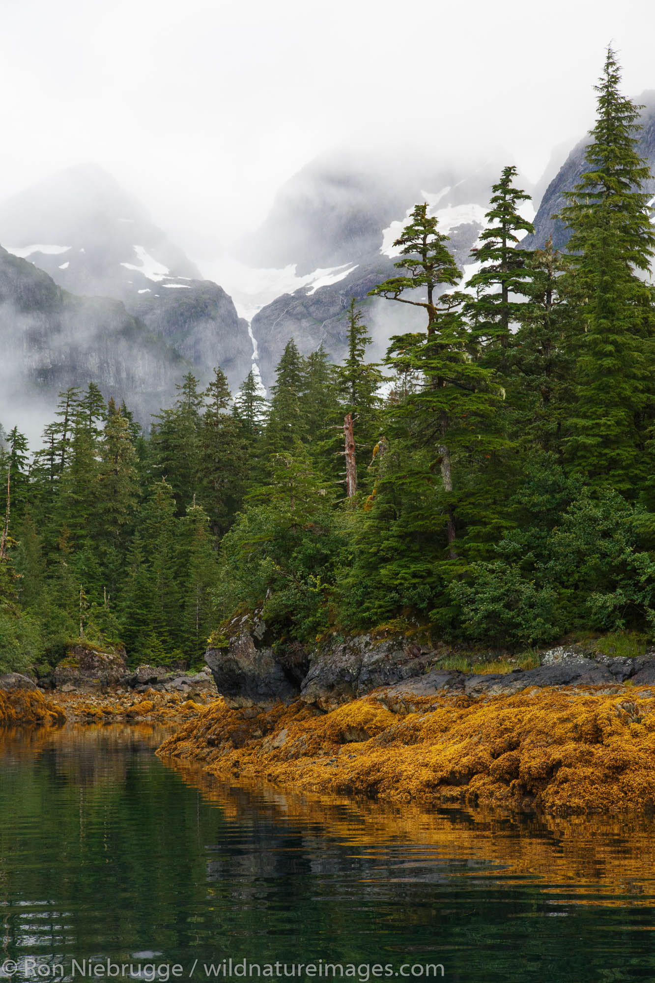Knight Island, Prince William Sound, Chugach National Forest, Alaska.