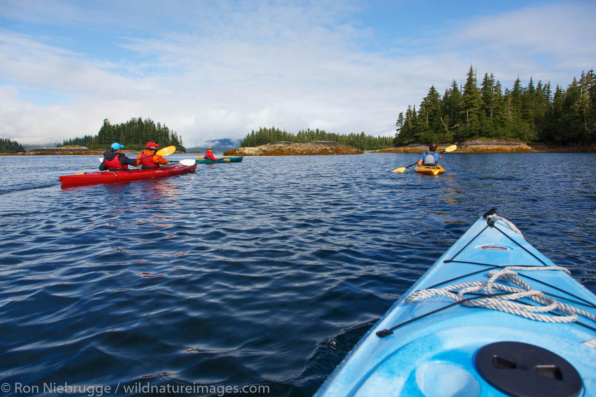 Kayaking around Knight Island, Prince William Sound, Chugach National Forest, Alaska.