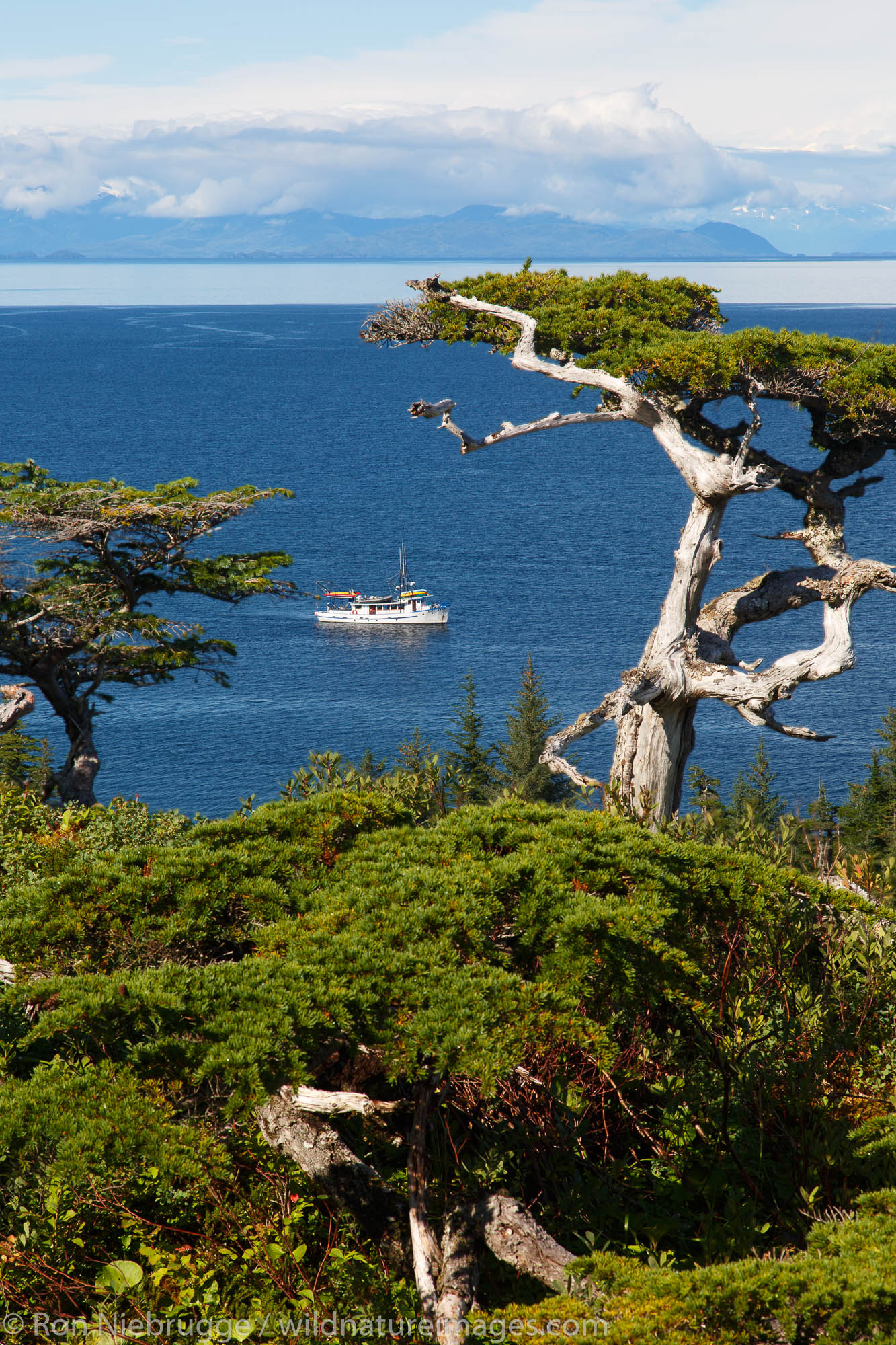 The Discovery at Knight Island, Prince William Sound, Chugach National Forest, Alaska.