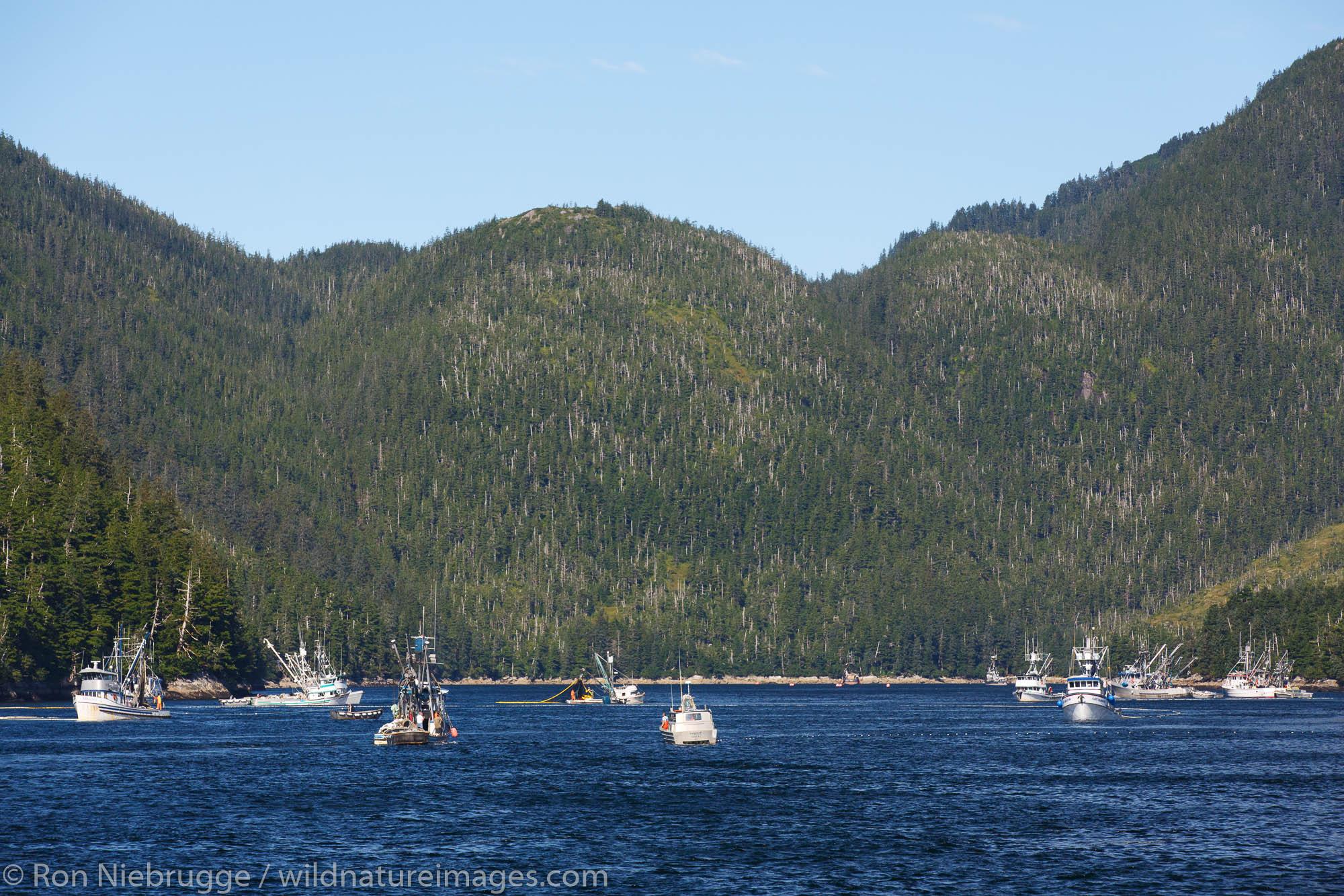 Commercial salmon fishing, Prince William Sound, Chugach National Forest, Alaska