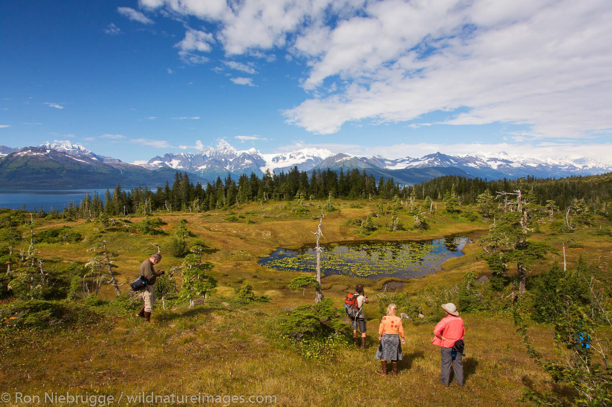 Hiking, Prince William Sound, Chugach National Forest, Alaska.