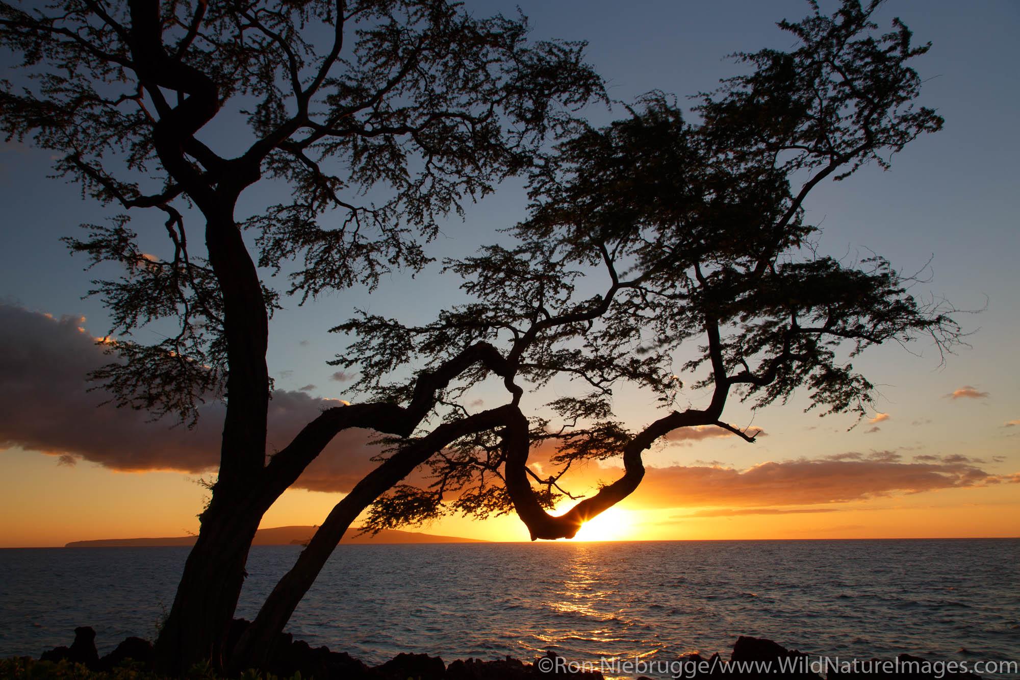 Sunset, Wailea Beach, Maui, Hawaii.