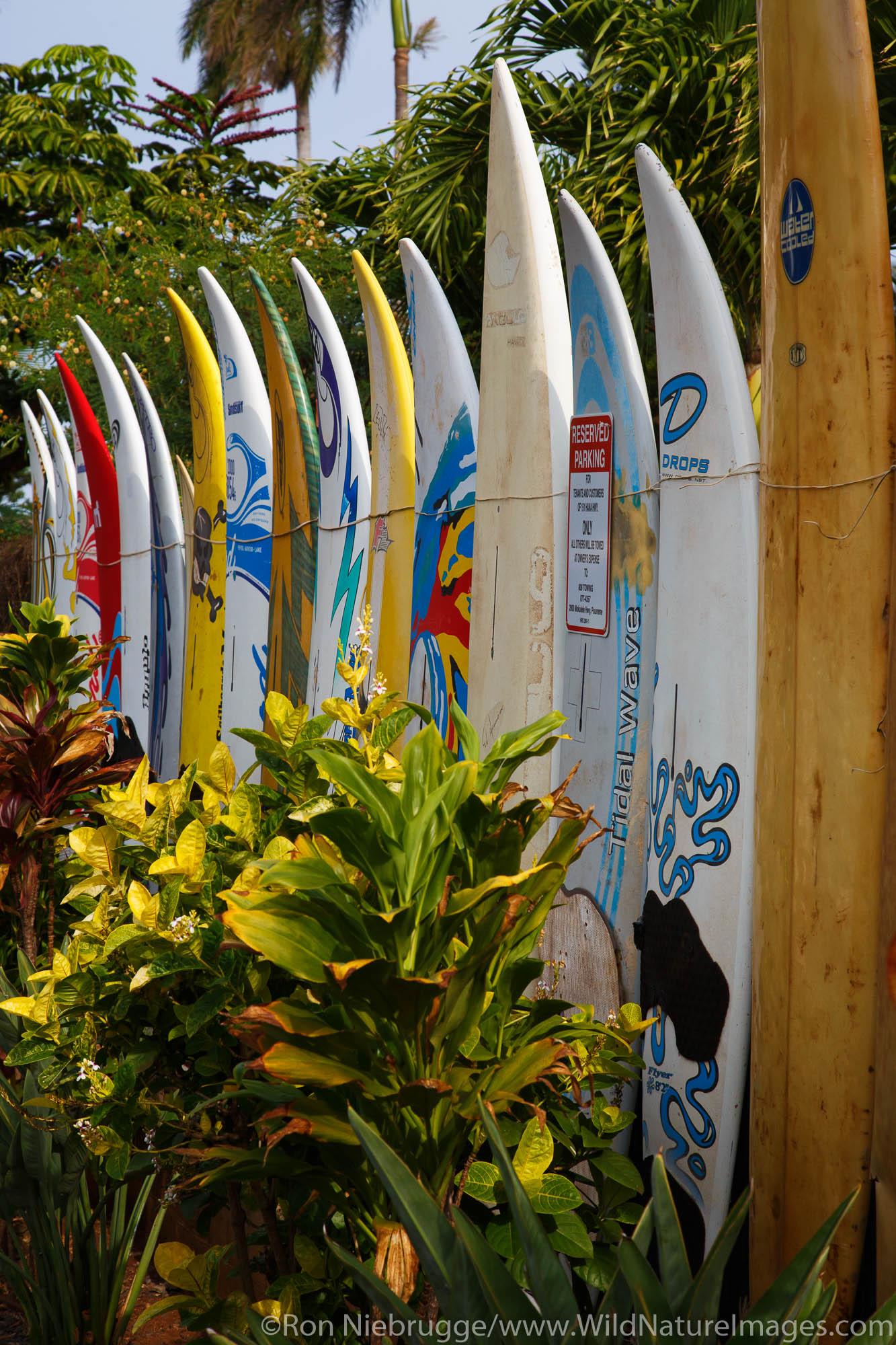 Pa'ia, Maui, Hawaii.