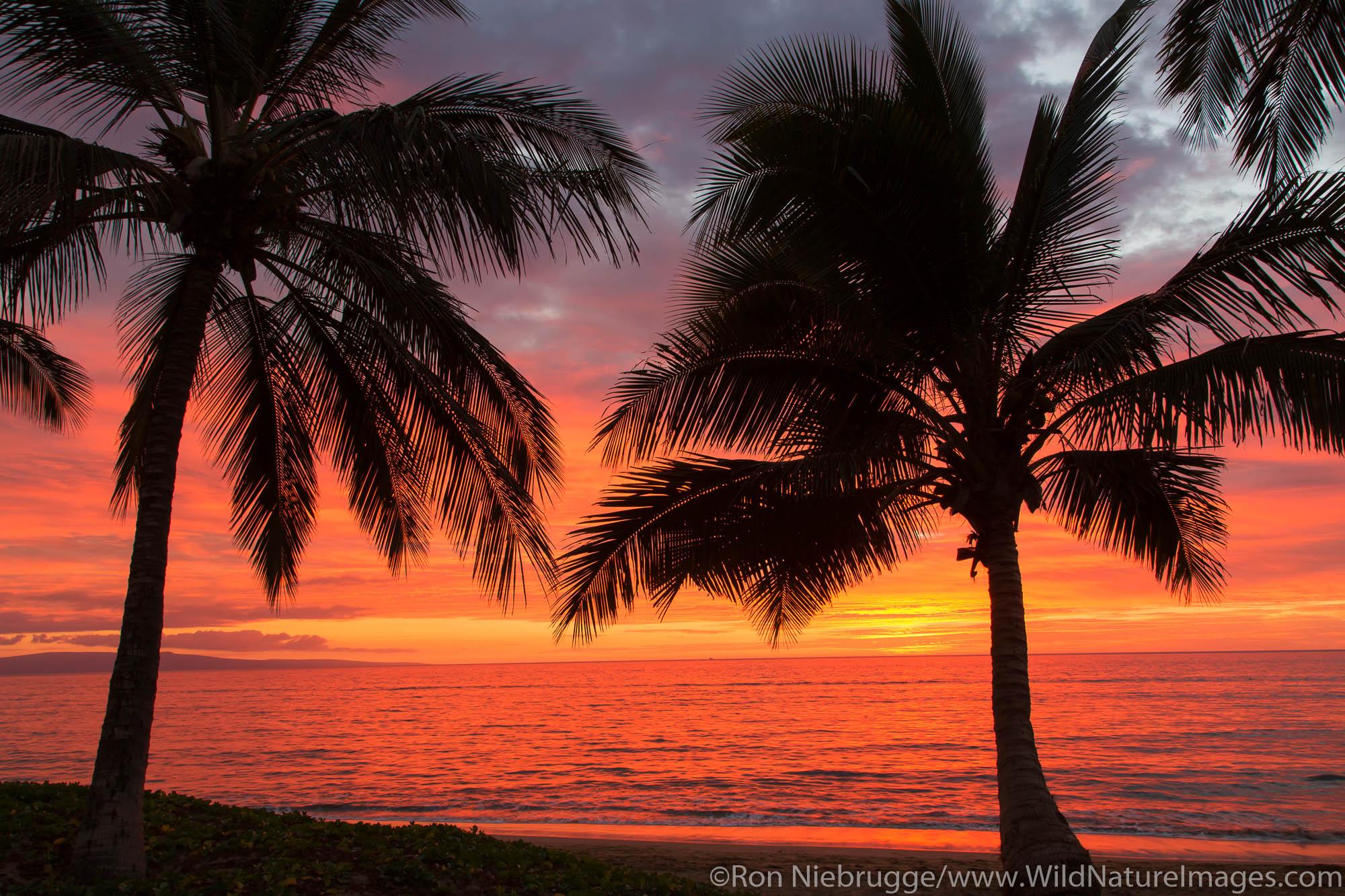 Maui, Hawaii, photos, Americas, Hawaiian, Mai Poina 'Oe La'u Beach Park, Mai Poina Oe Lau Beach Park, North America, North American...