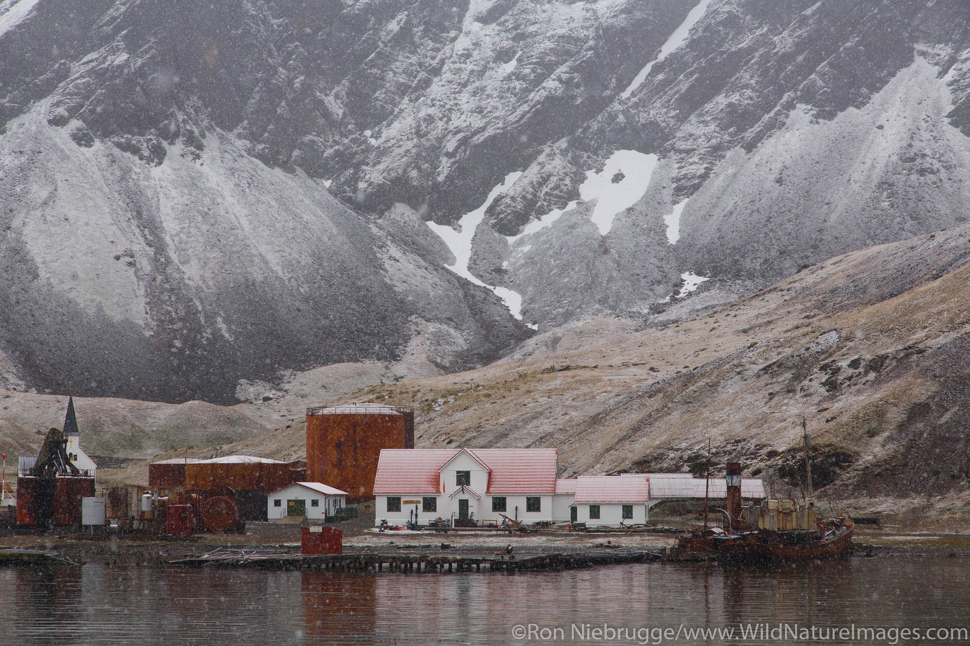Antarctica, Grytviken, photo