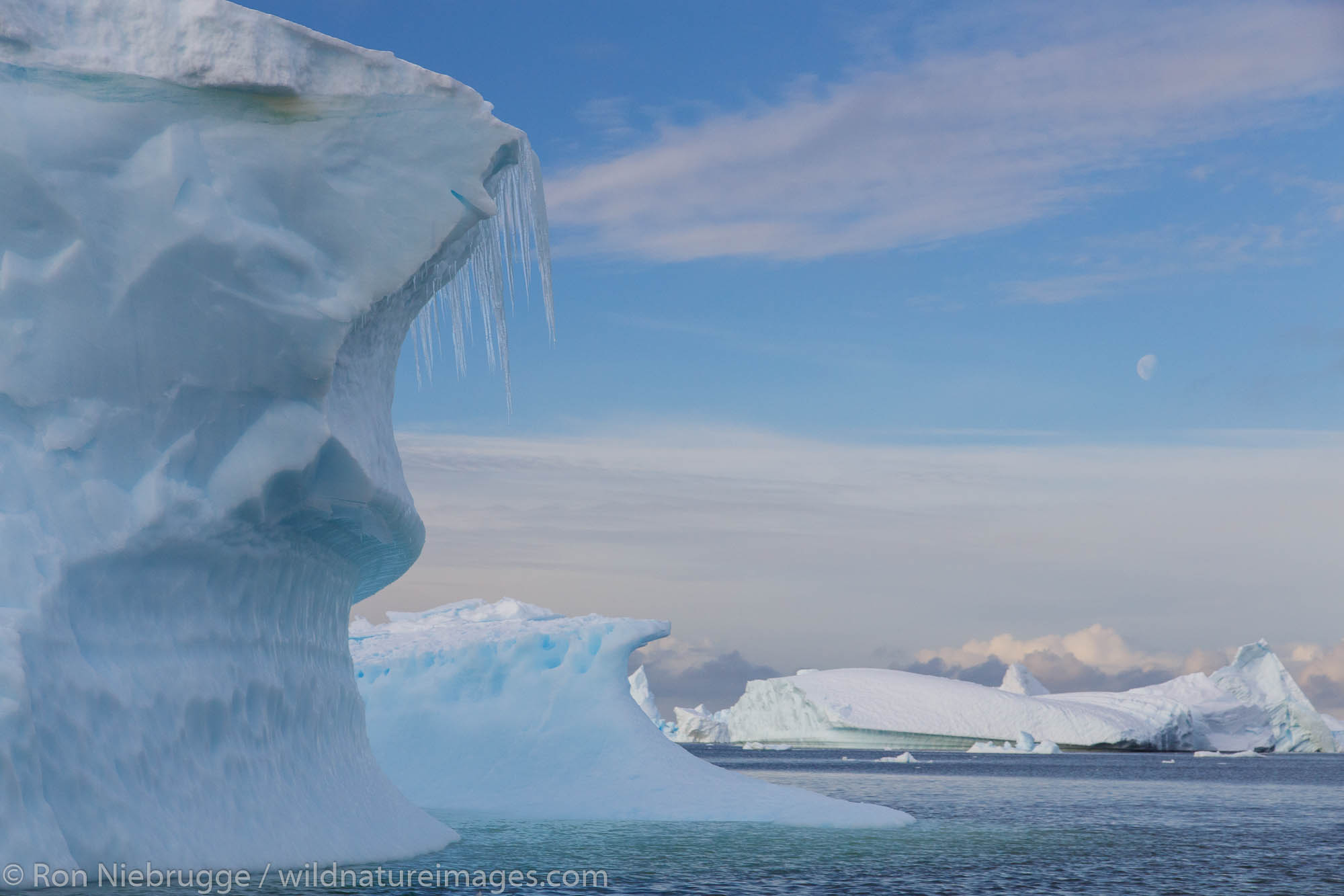 Iceberg graveyard near Petermann Island, Antarctica.