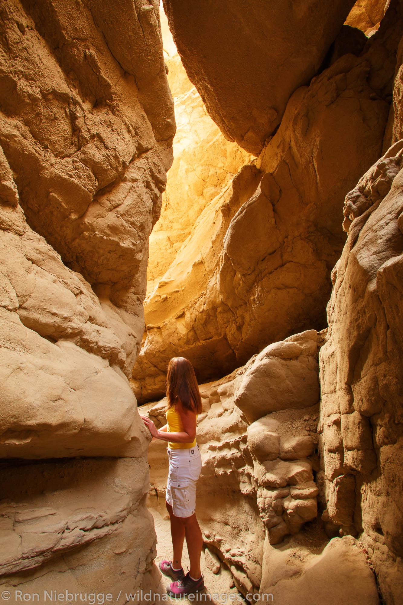 A visitor explores a slot canyon in Anza-Borrego Desert State Park, California. (model released)