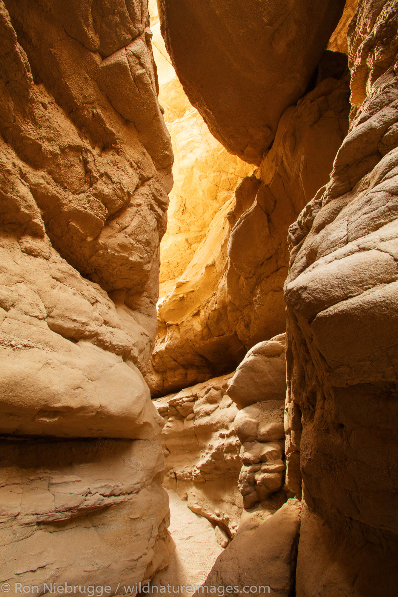 A slot canyon in Anza-Borrego Desert State Park, California.