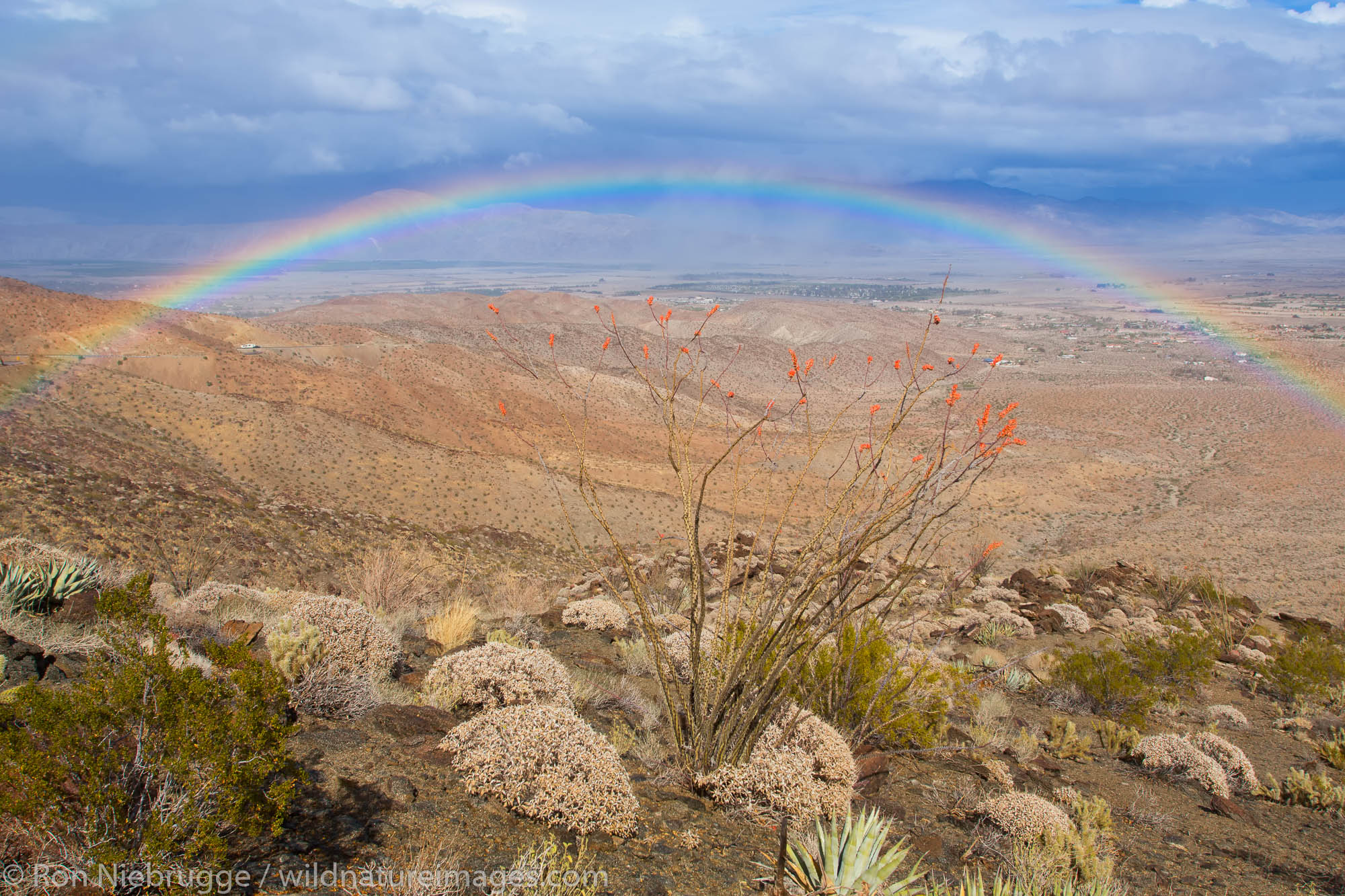 Rainbow over Anza-Borrego Desert State Park, California.