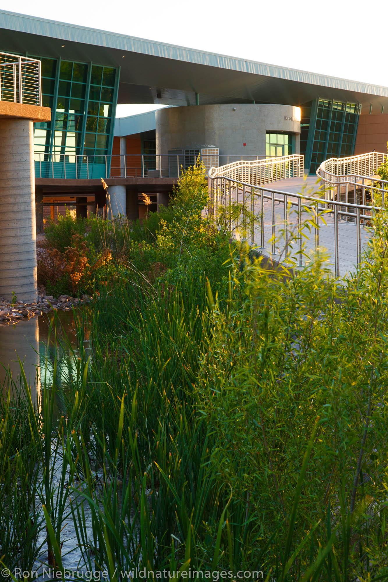 Clark County Wetlands Park Nature Preserve and Nature Center near Las Vegas, Nevada.