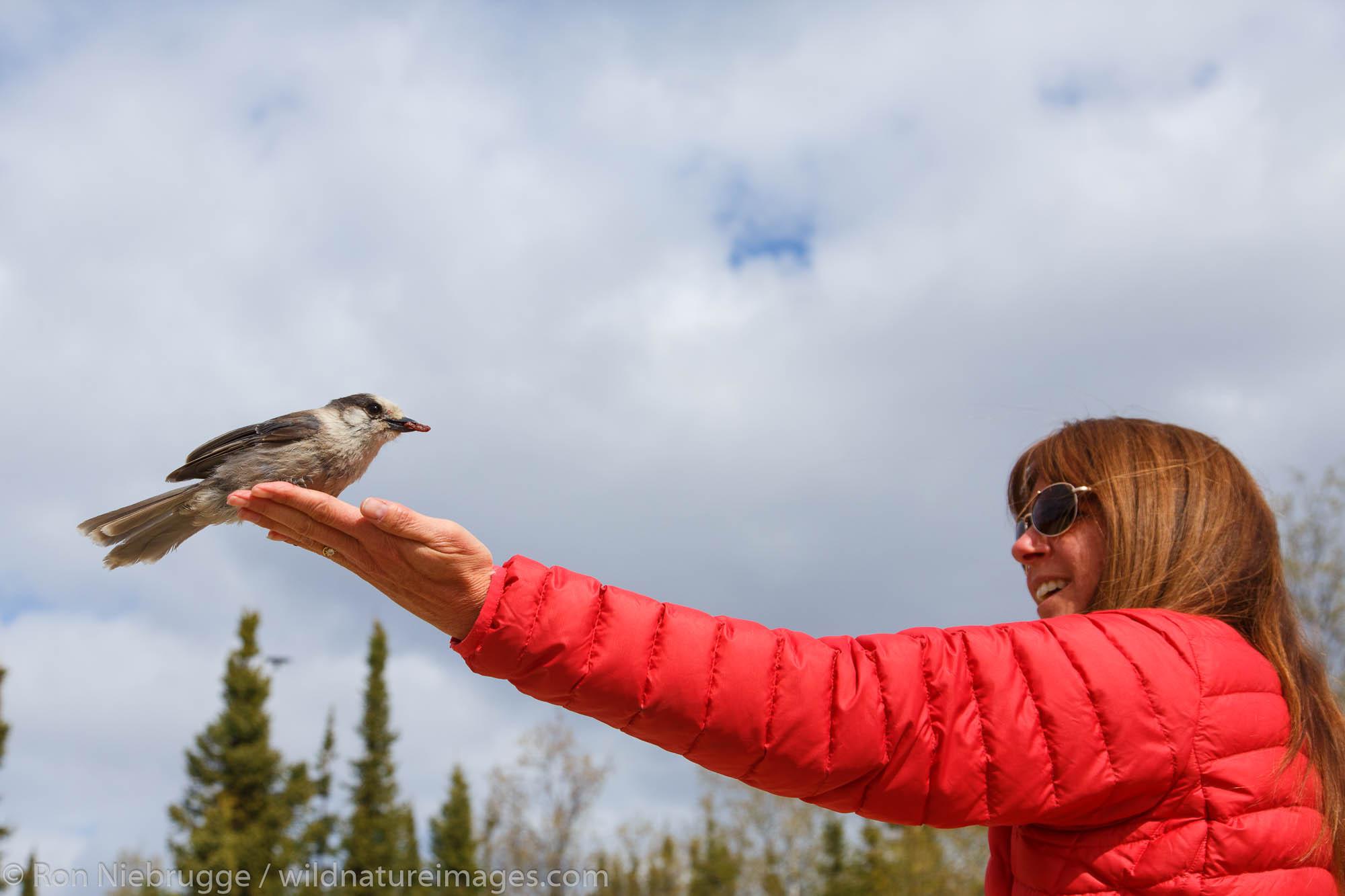 Visitors at the Arctic Circle along the Dalton Highway, Alaska.