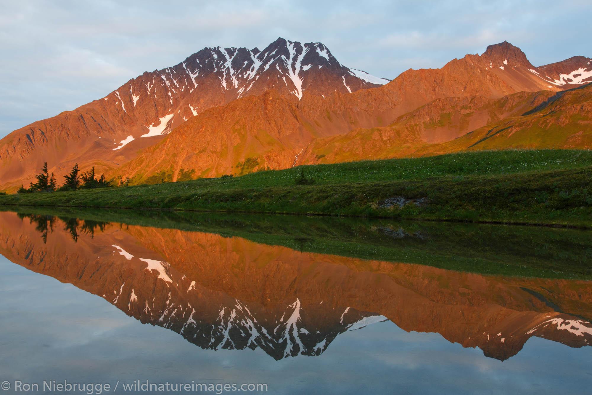 Along the Lost Lake Trail, Chugach National Forest, near Seward, Alaska.