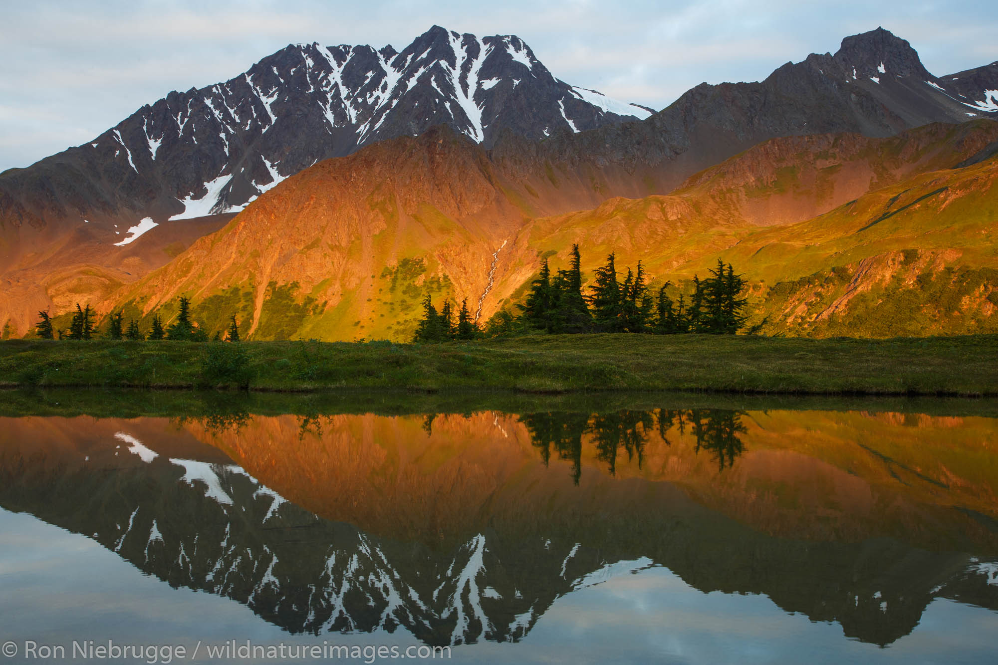 Near the Lost Lake Trail, Chugach National Forest, near Seward, Alaska.