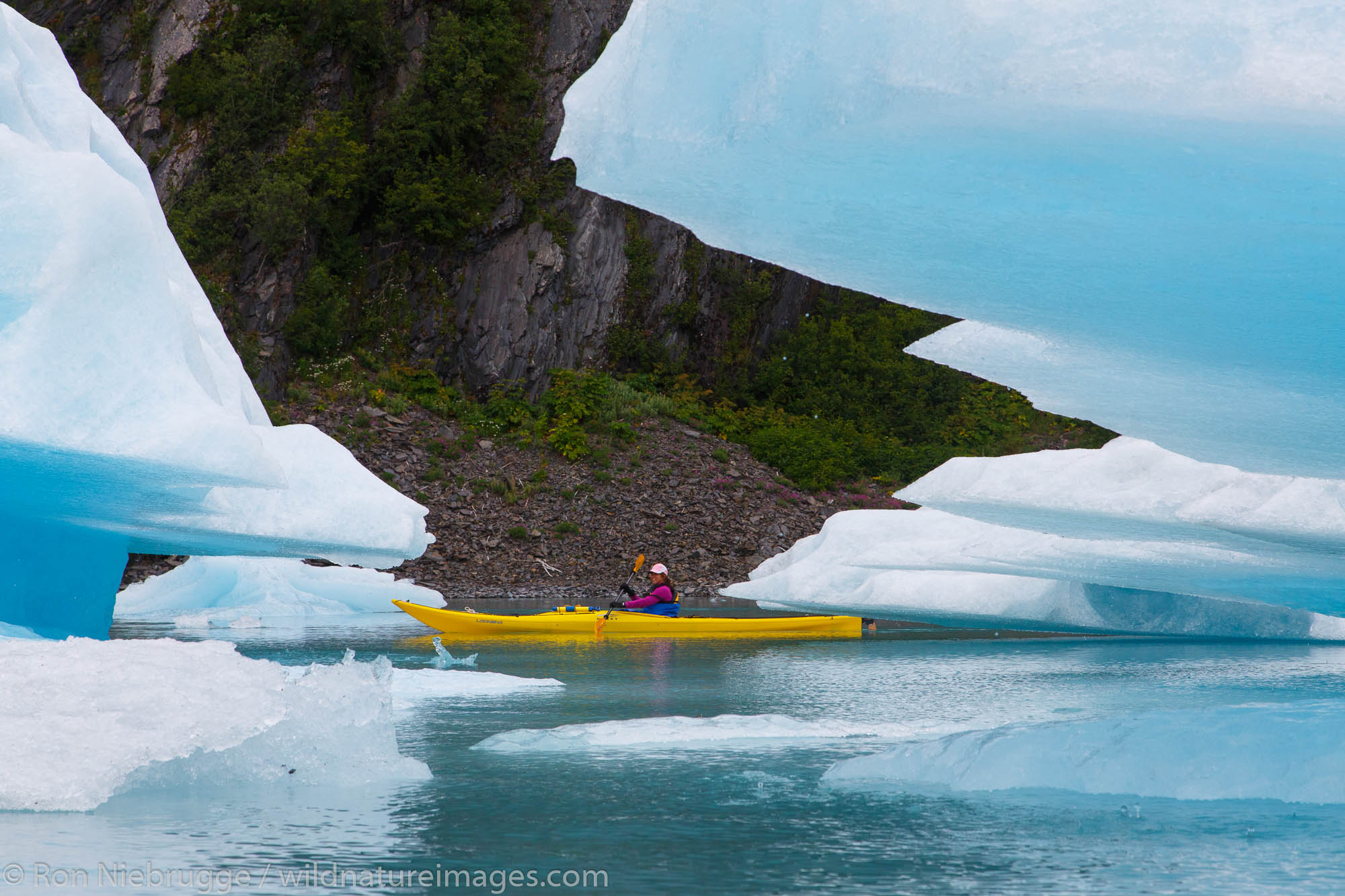 Kayaking in Bear Glacier Lagoon, Kenai Fjords National Park, near Seward, Alaska.  (model released)