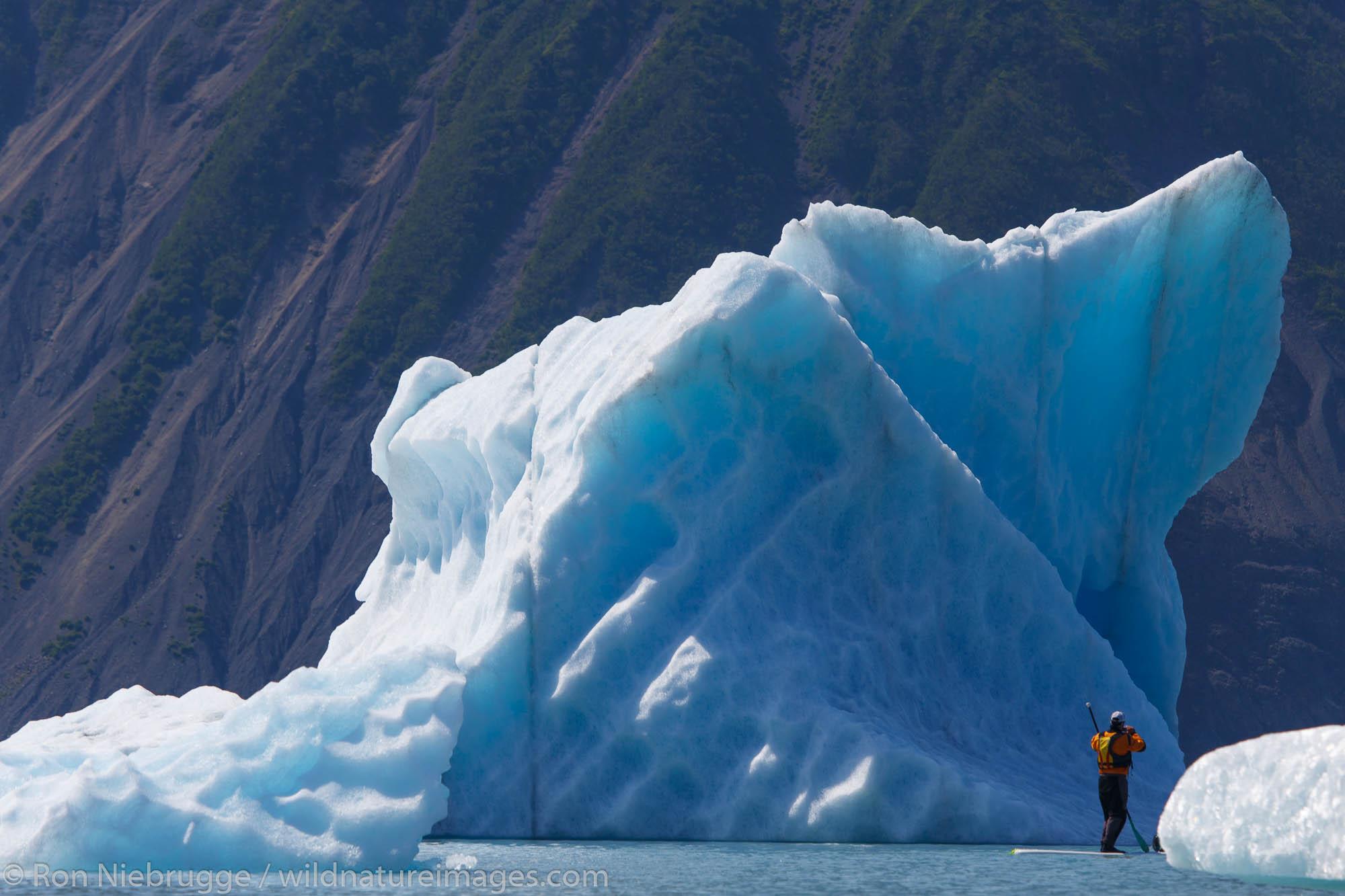 Stand up paddle boarders in Bear Glacier Lagoon, Kenai Fjords National Park, near Seward, Alaska.