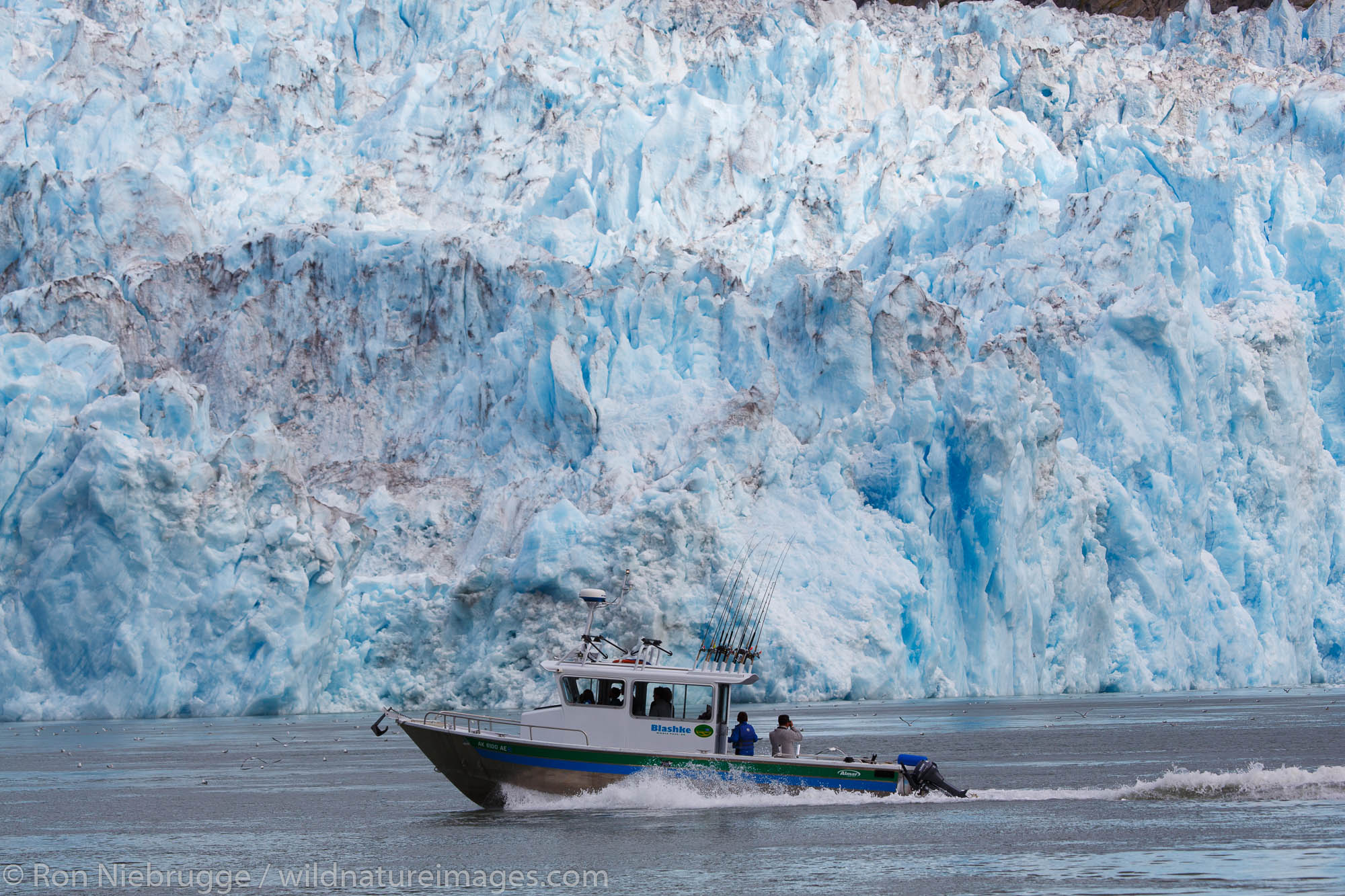 Boat at Le Conte Glacier,Tongass National Forest, Alaska.