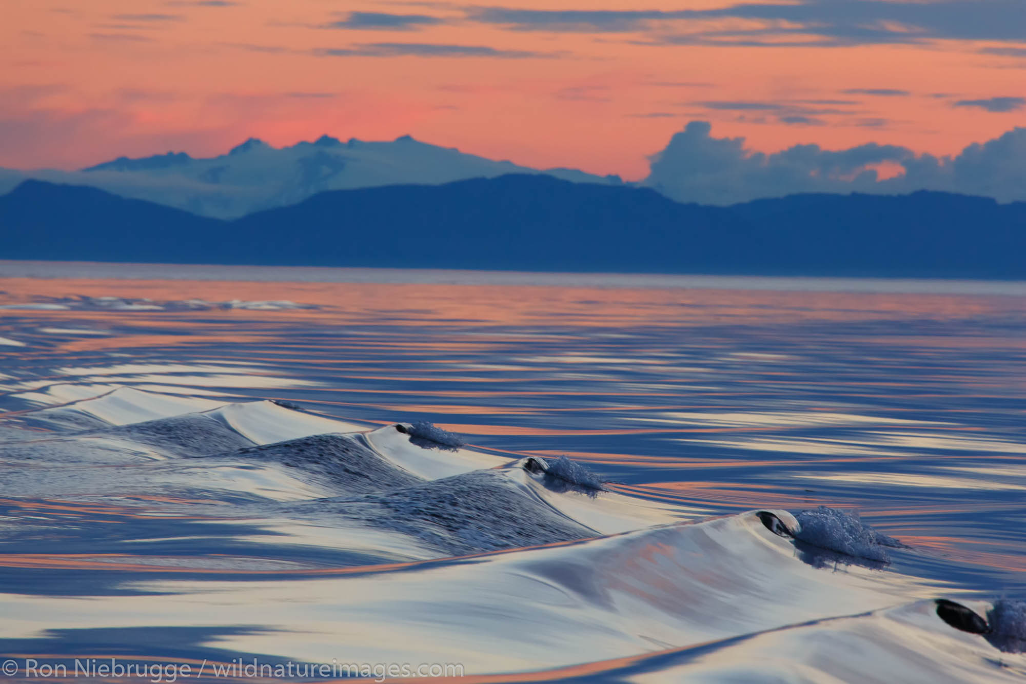 Sunset, Cape Fanshaw, Tongass National Forest, Alaska.
