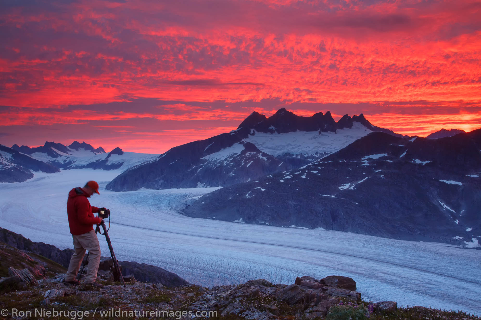 Photographer capturing the sunrise From Mount Stroller White above the Mendenhall Glacier, Tongass National Forest, Alaska.