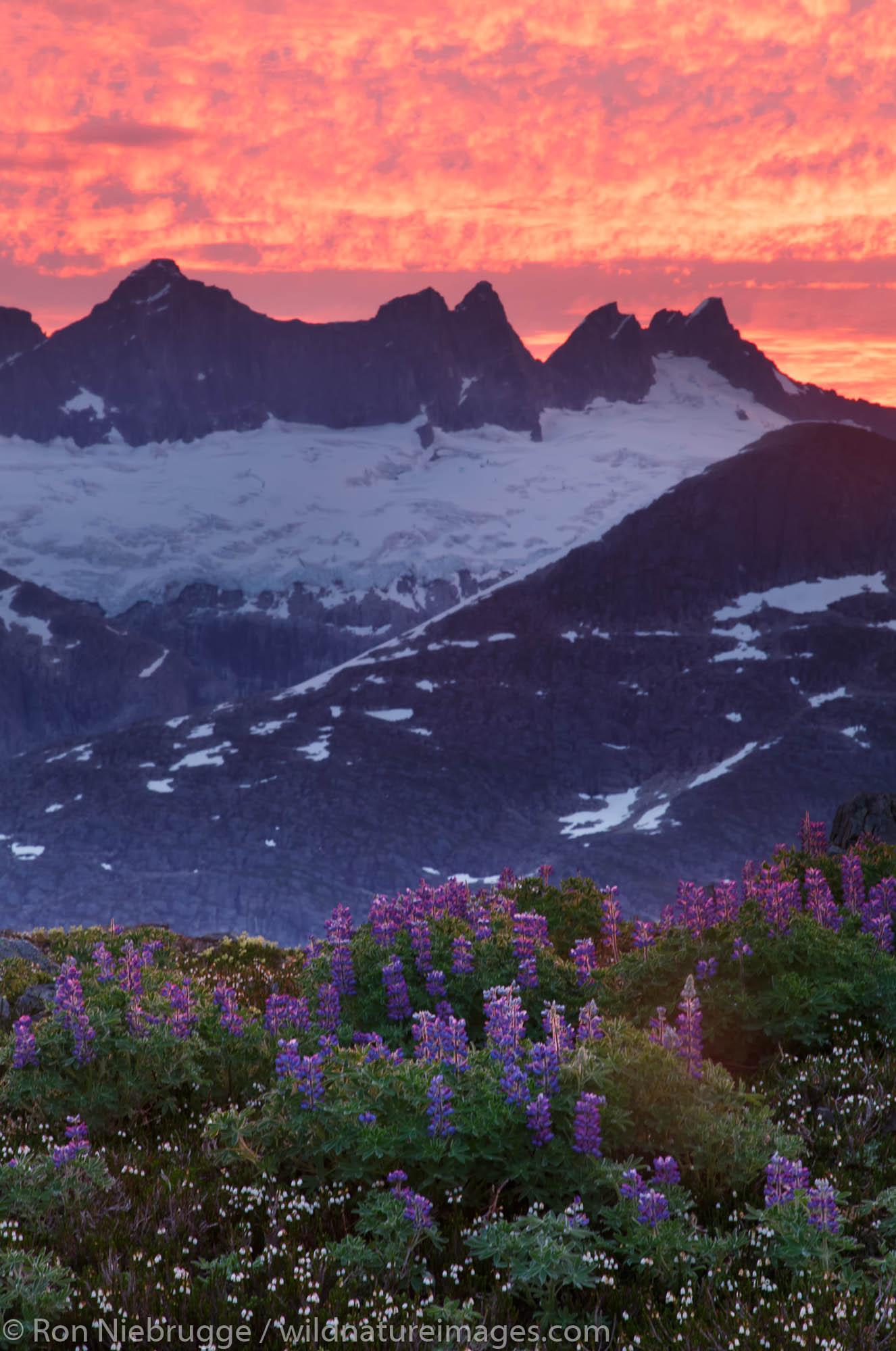 Sunrise From Mount Stroller White above the Mendenhall Glacier, Tongass National Forest, Alaska.