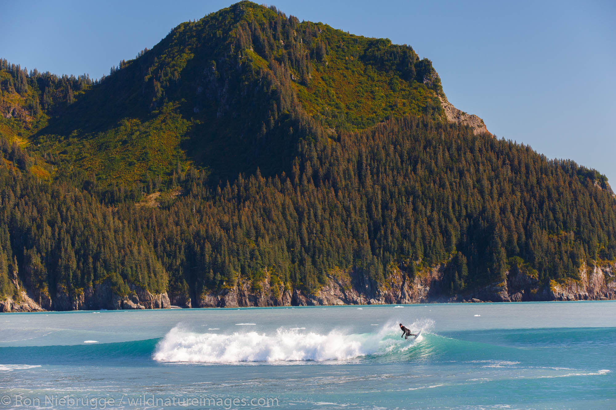 Surfing in front of Bear Glacier Lagoon, Kenai Fjords National Park, near Seward, Alaska.