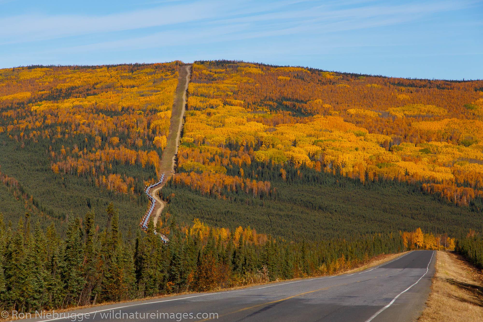 Alyeska Pipeline along the Dalton Highway, Alaska.