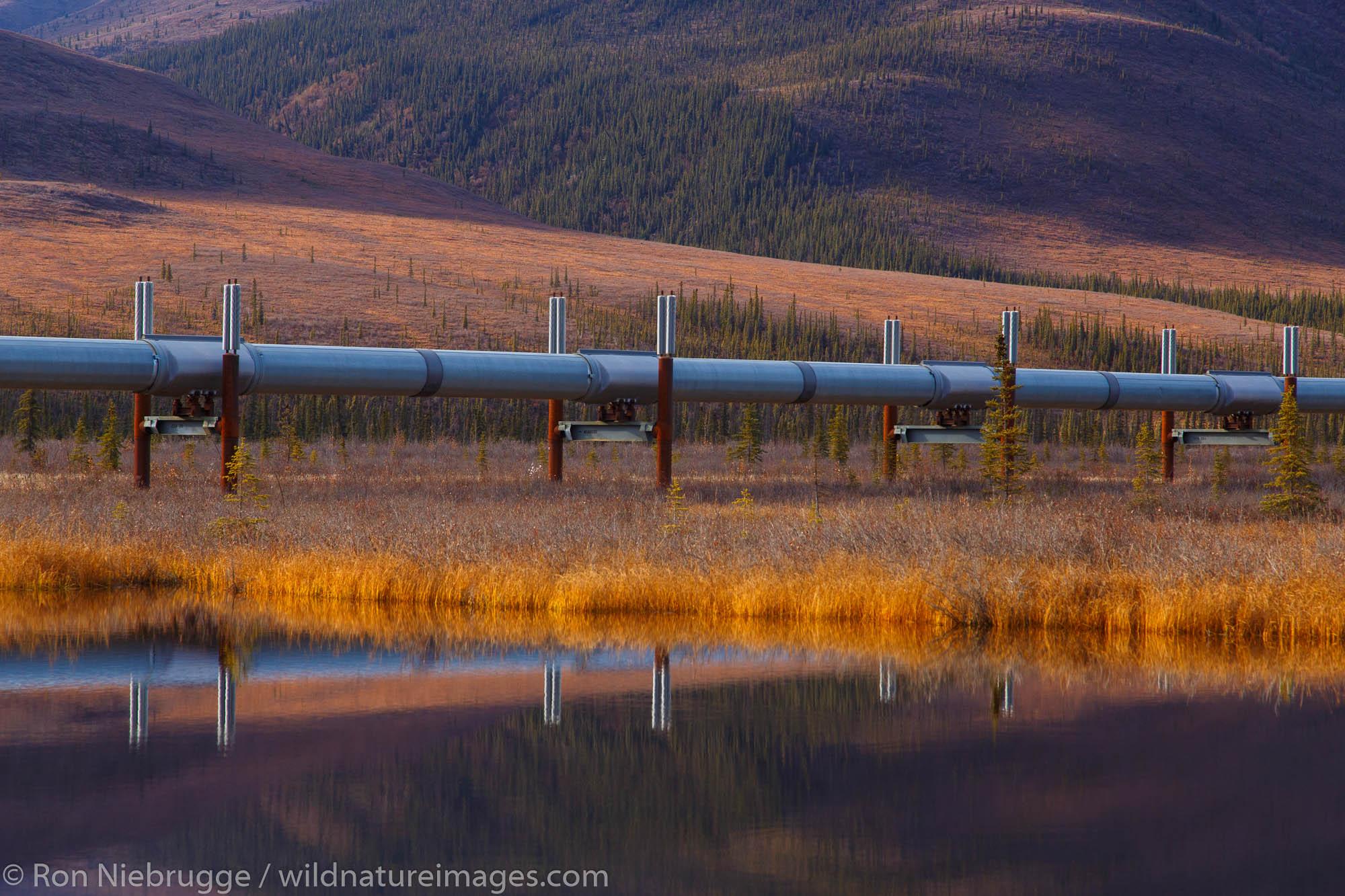 Alyeska Pipeline from the Dalton Highway, Alaska.