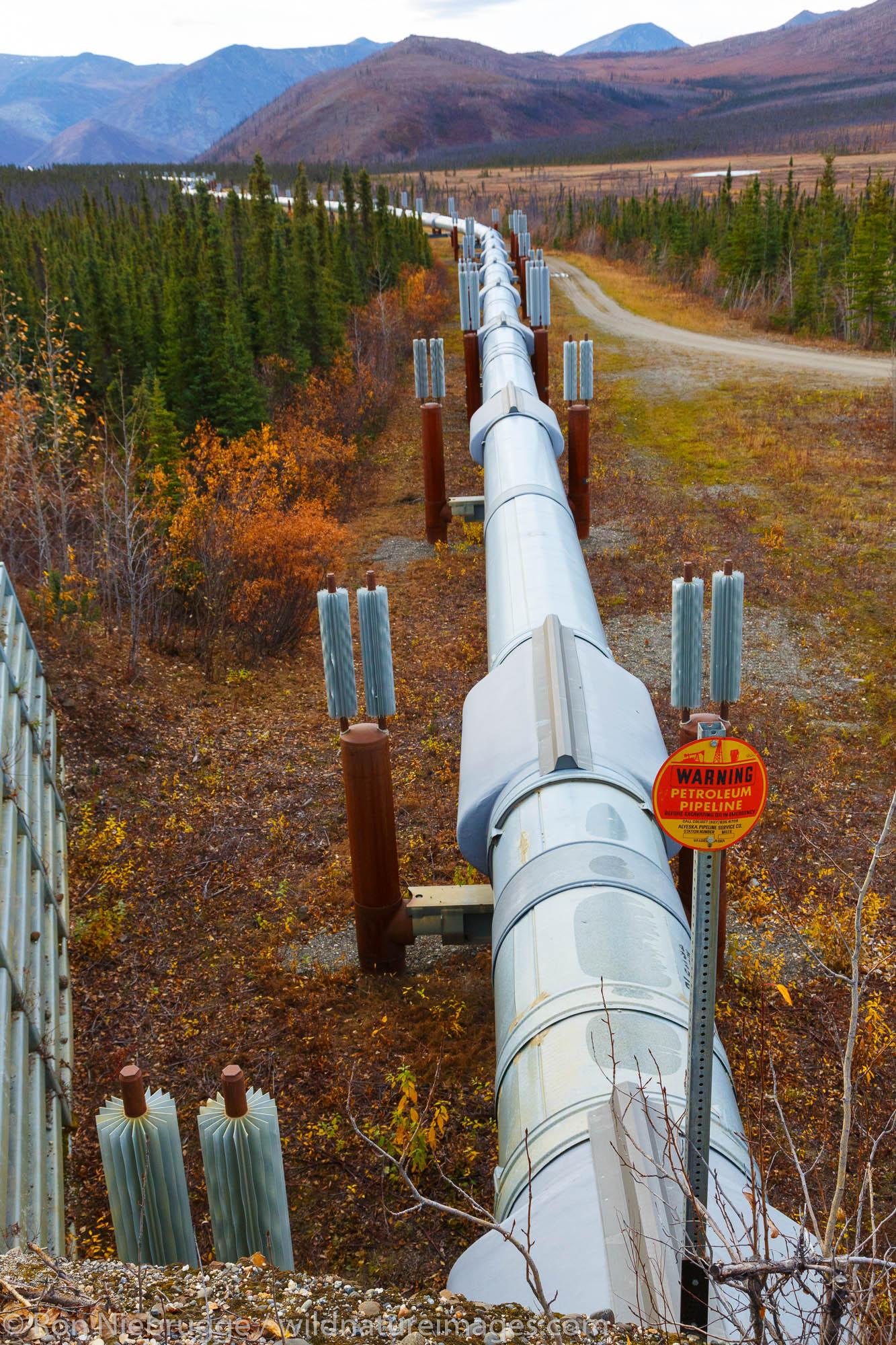 Alyeska Pipeline near the Dalton Highway, Alaska.