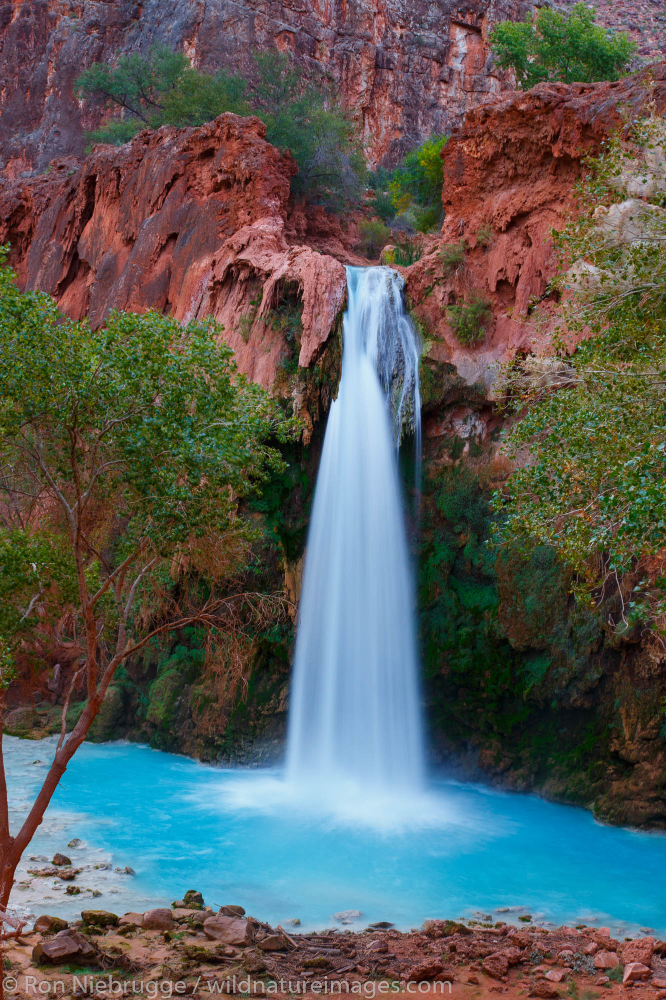 Havasu Falls, Havasupai Indian Reservation, Grand Canyon, Arizona.